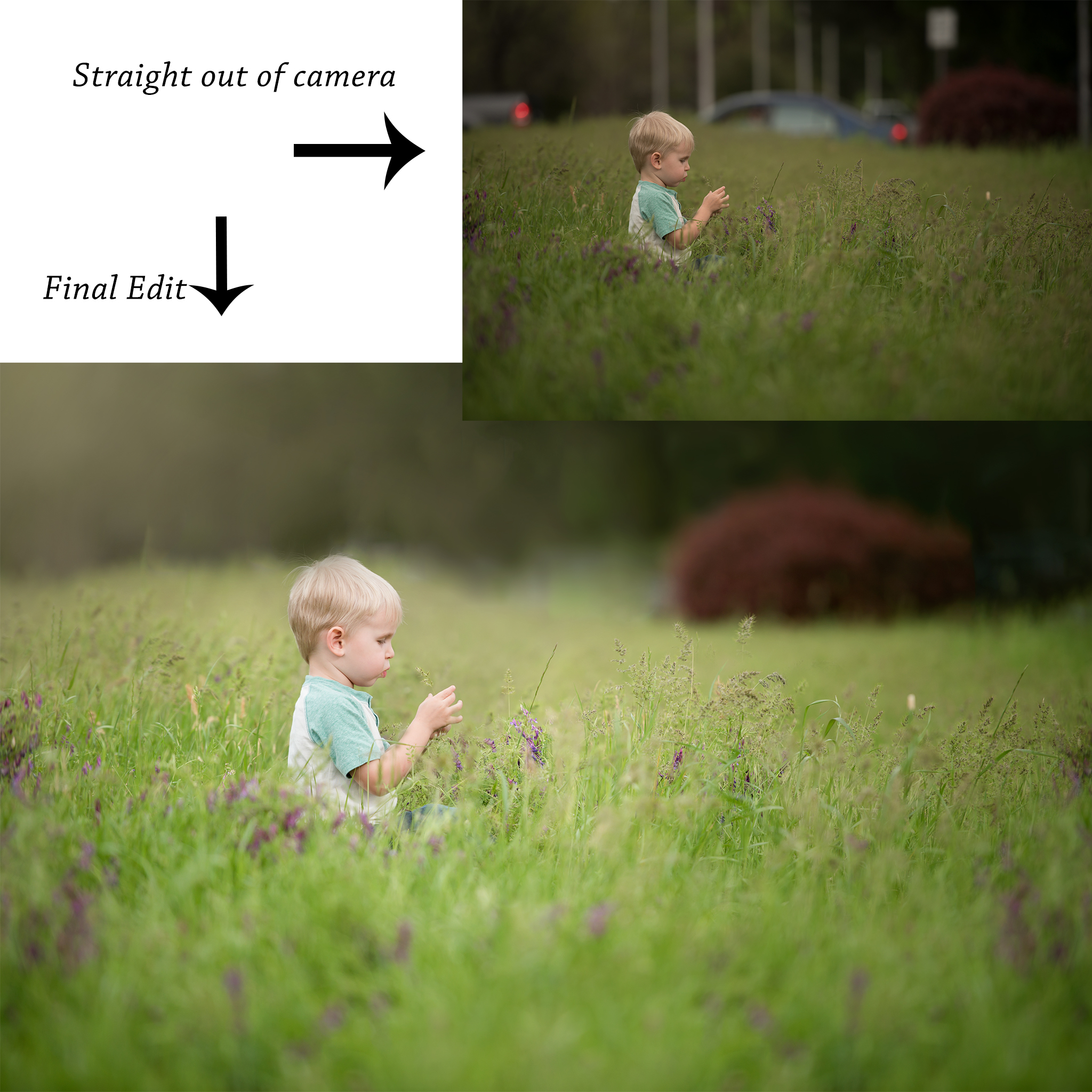 Before and after edit - Dani D Photography - Redding, CA Photographer