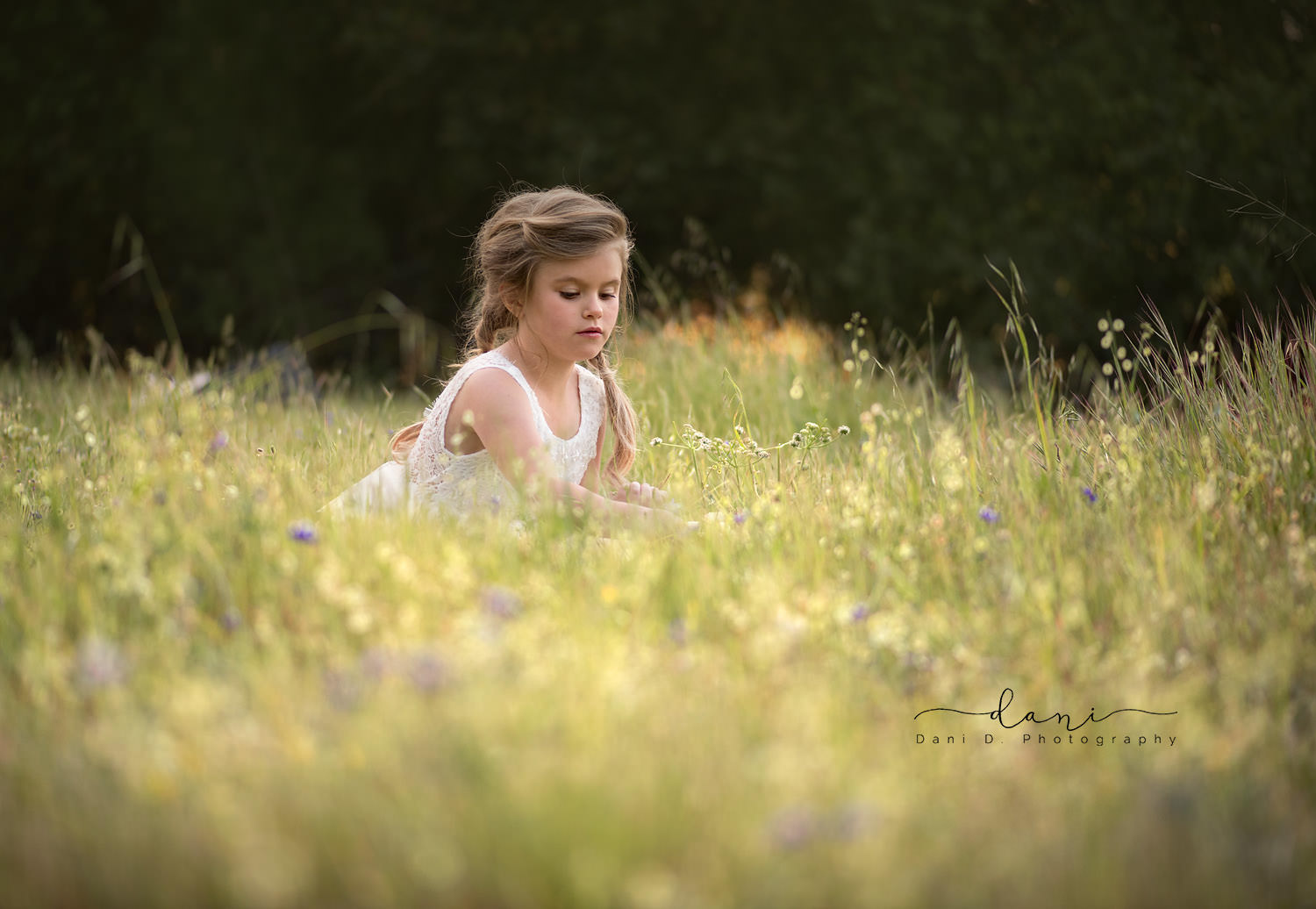 Young girl in a field of wildflowers - Northern California child and family photographer