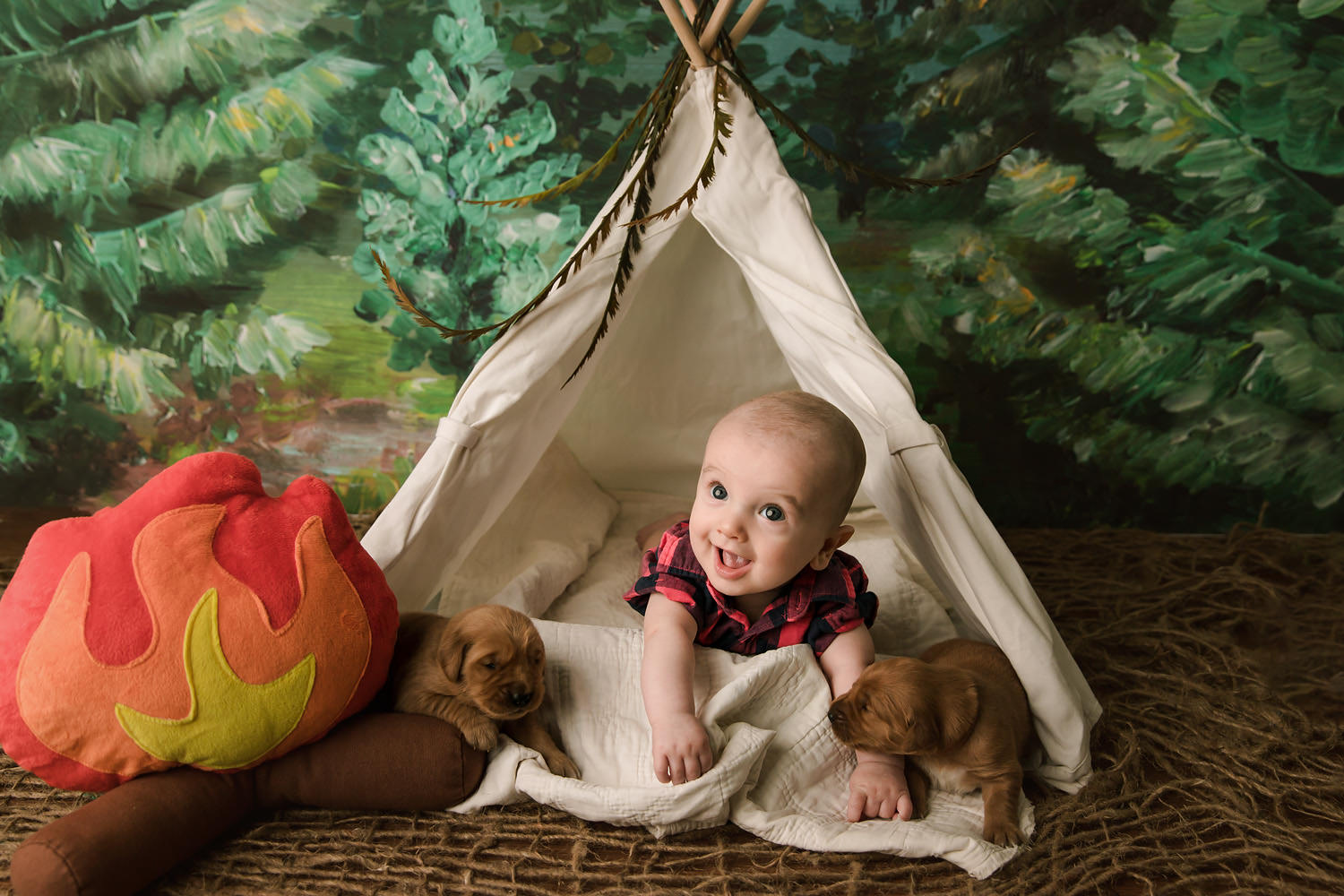 Baby boy with puppies - Redding, CA photo studios