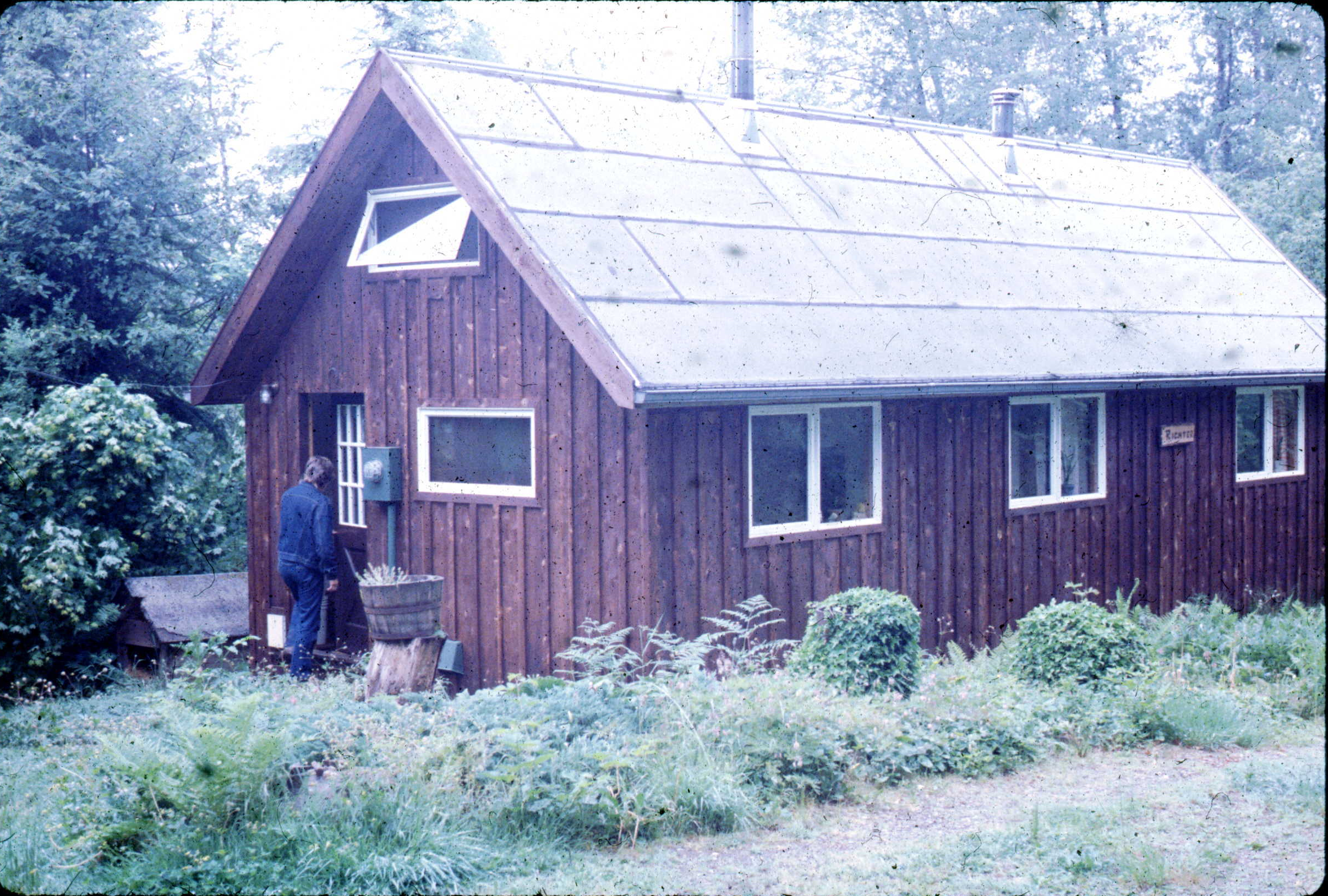 Mosswood Hollow 1983.