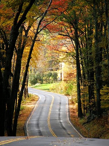 Take this road trip to happiness!