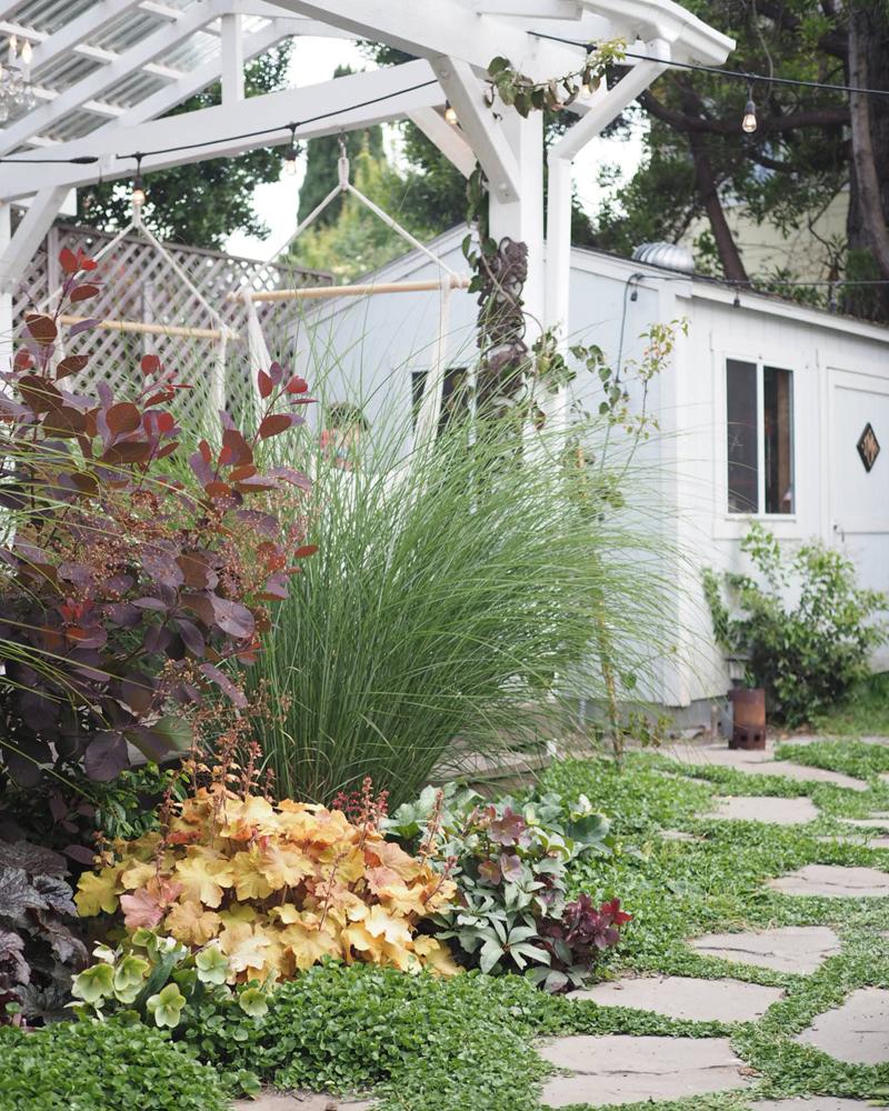 07 Bowerbird Backyard.jpg