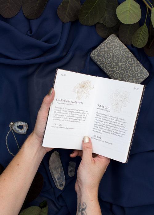 Fleurot_Guidebook_Pages_Web.jpg