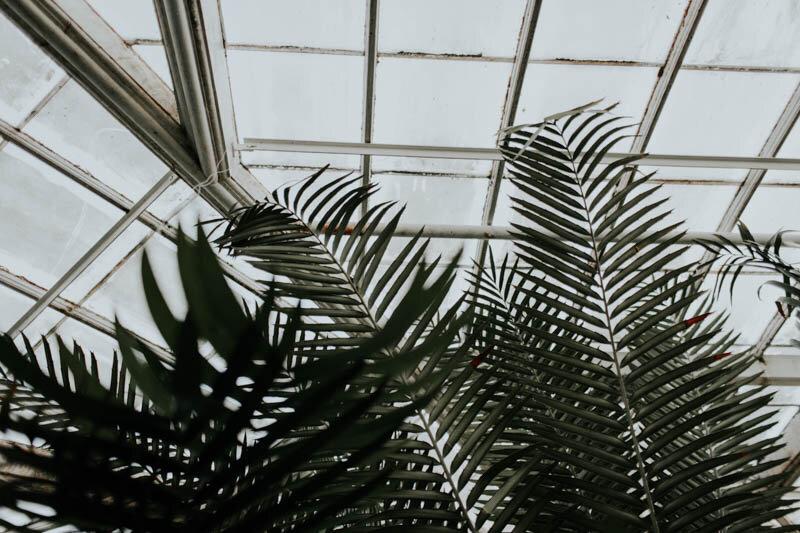 BowerbirdAtelier_BotanicalGardenEditorial_RachelWakefield-7.jpg