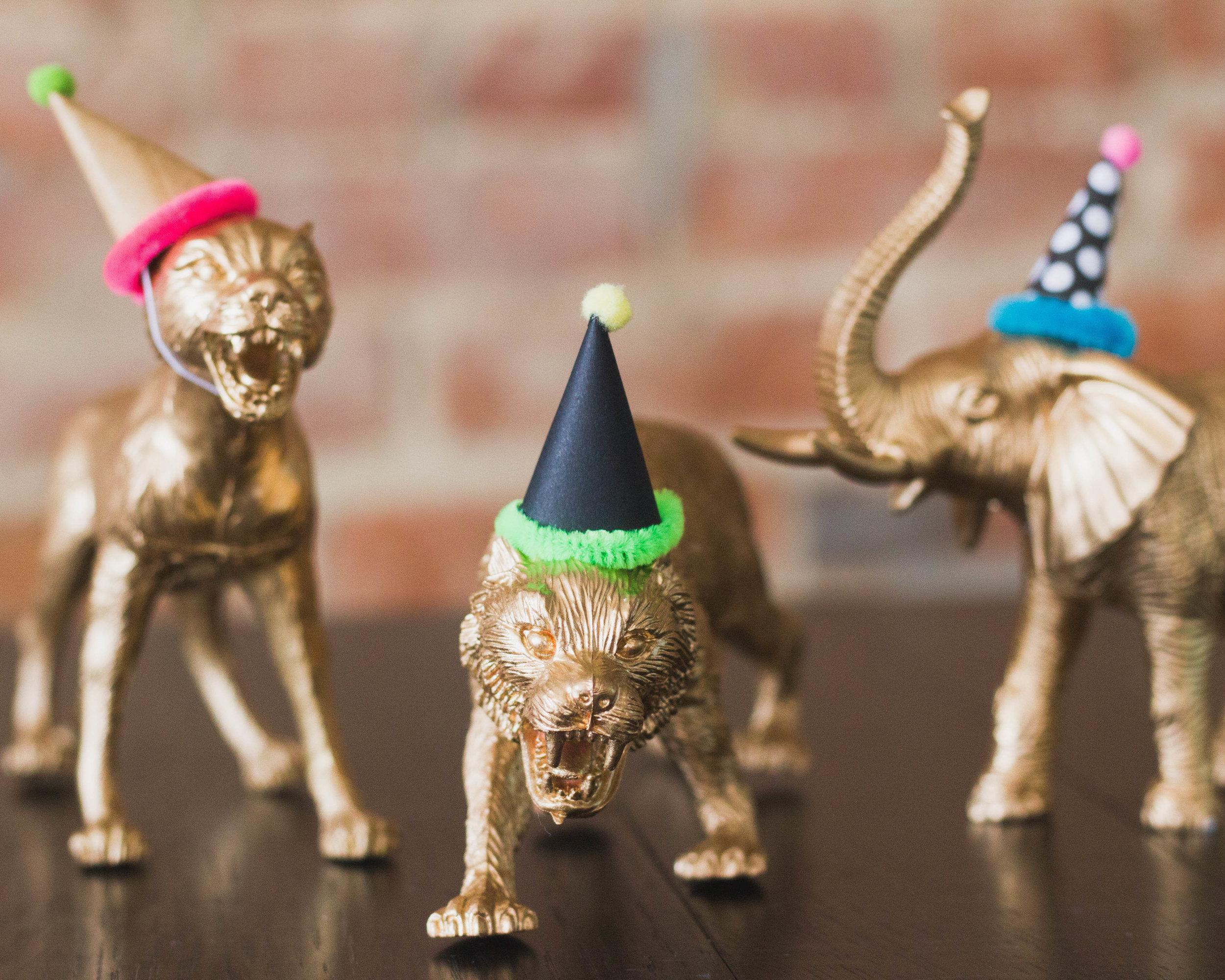 party animal birthday theme