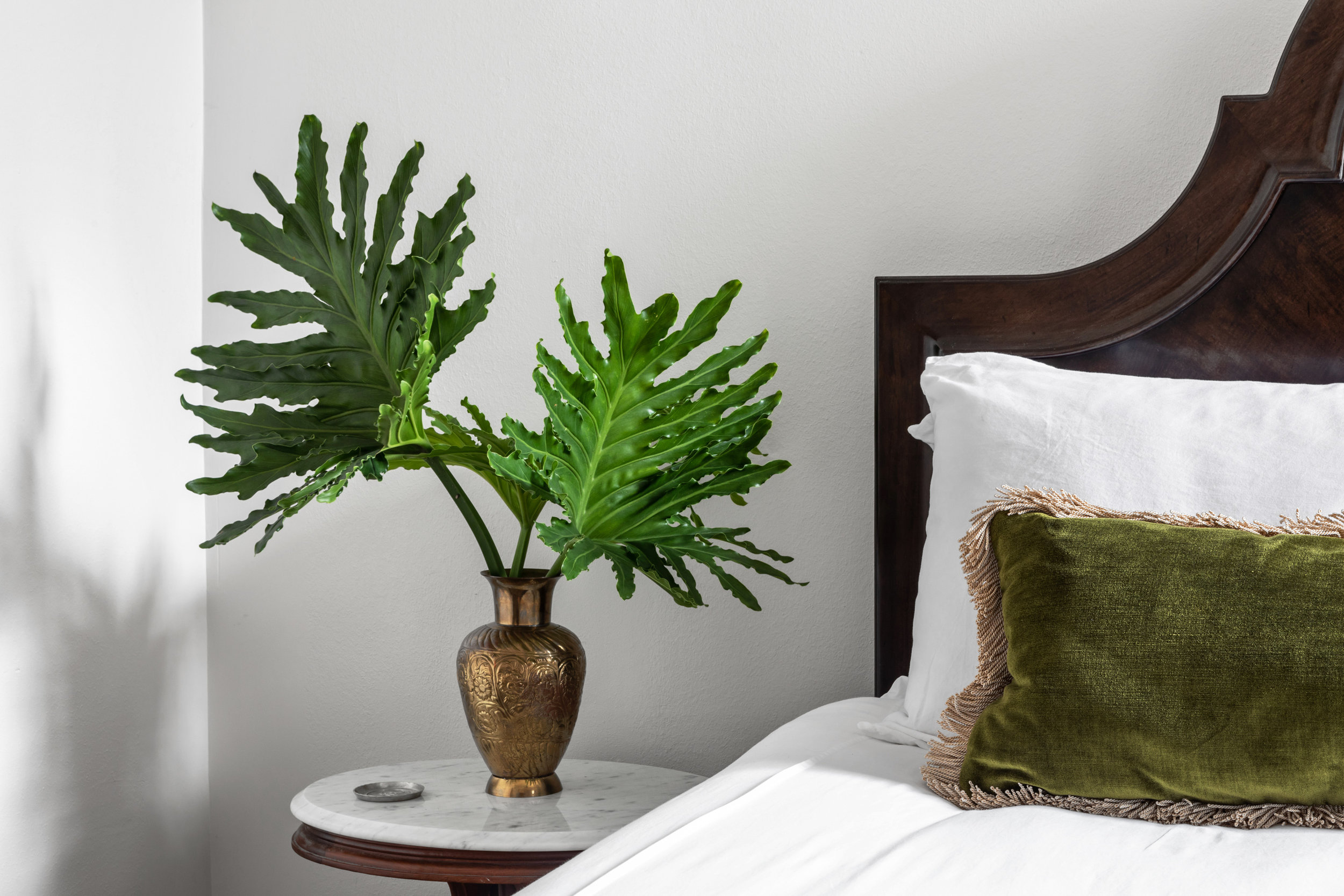 photo by Jacqueline Marque, featuring our Moss Green Velvet Lumbar Pillow