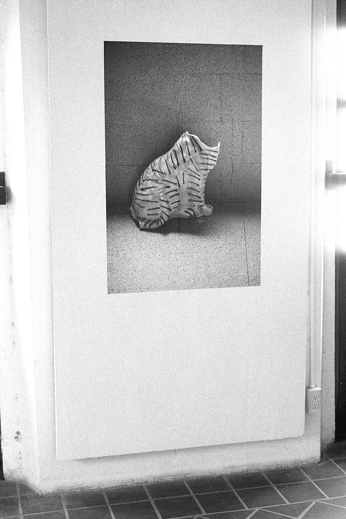 S/T, Impresión en papel tapiz, 120 x 80 cm.