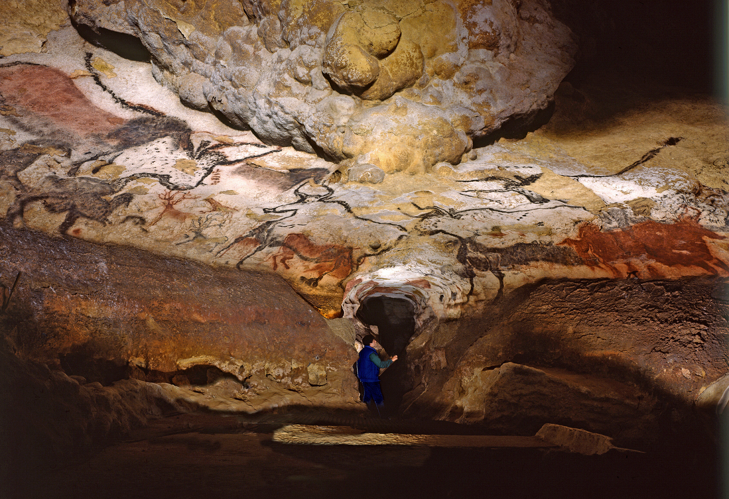 cave walls paintings.jpg