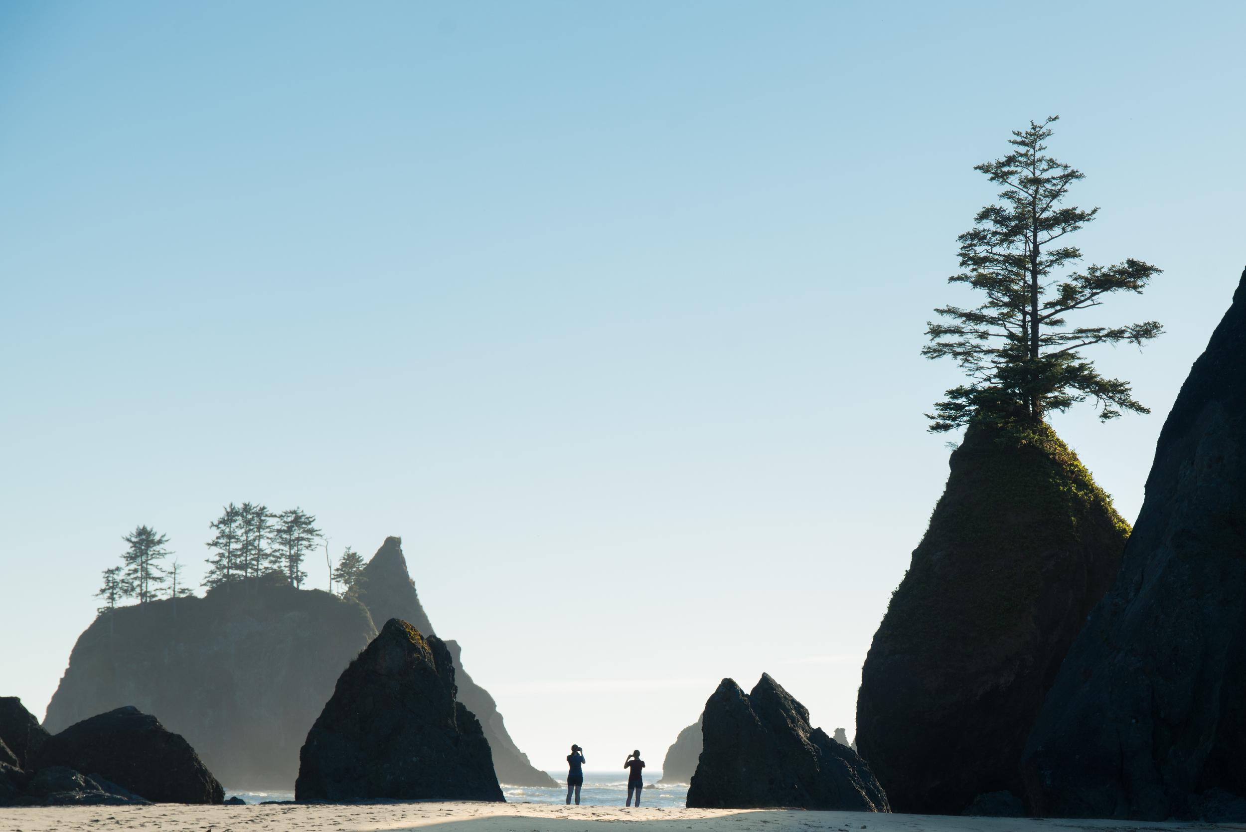 Point of Arches, Shi Shi Beach, WA