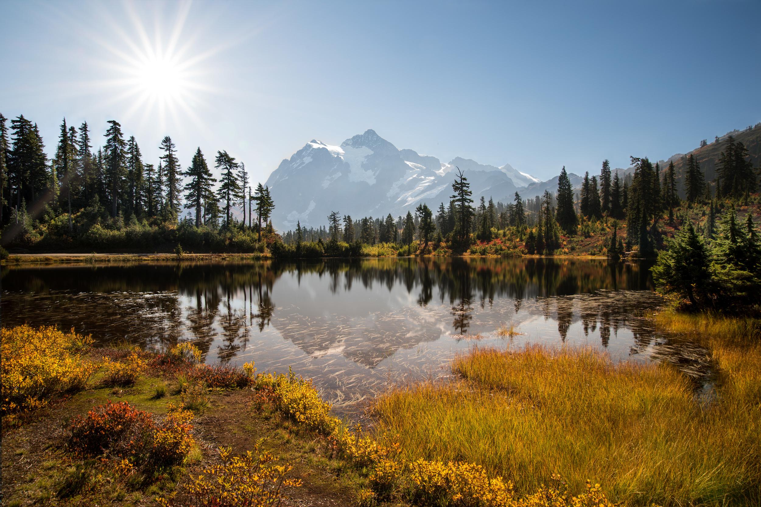 Good morning, Picture Lake