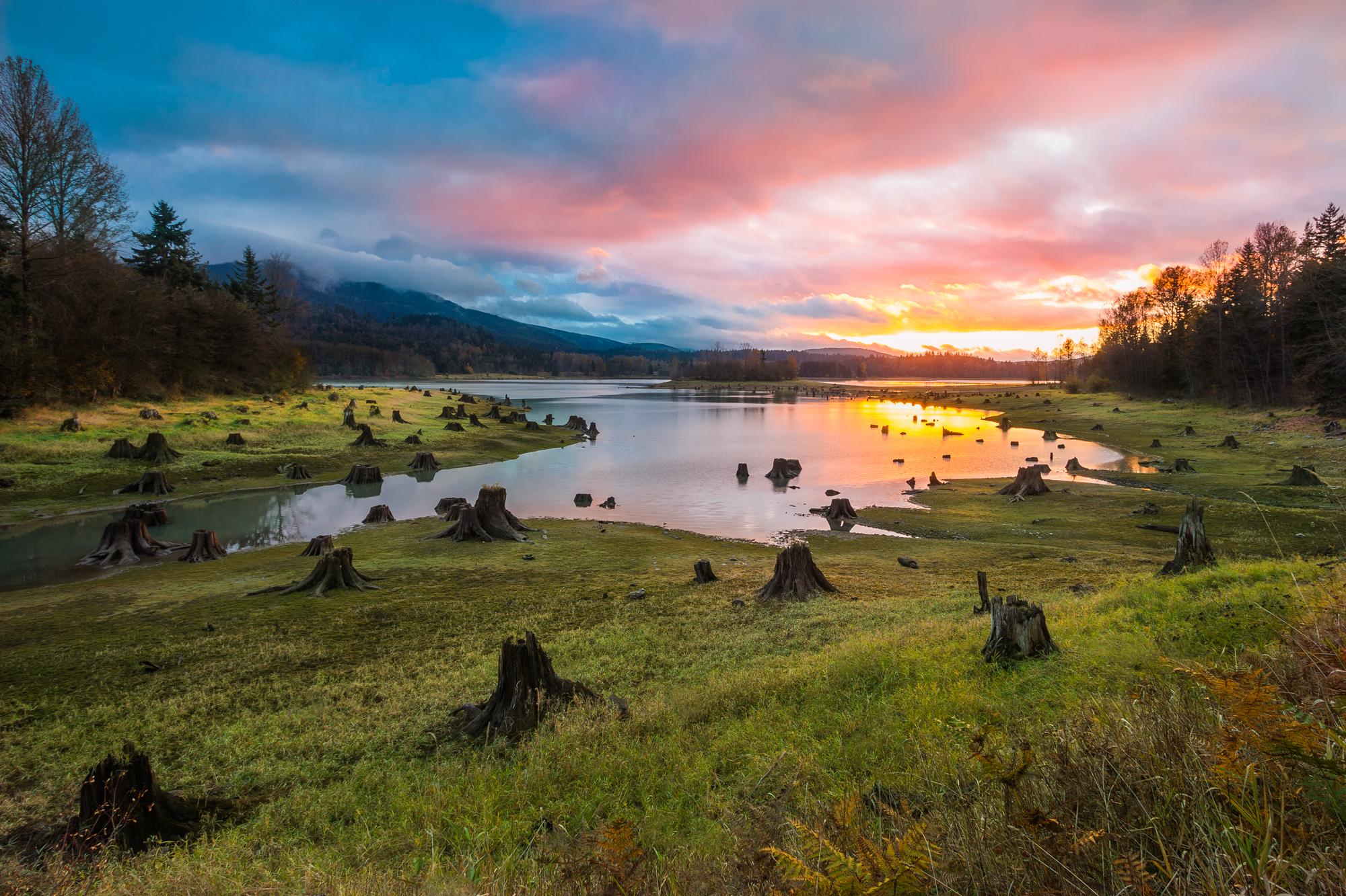 Alder Lake, Drained