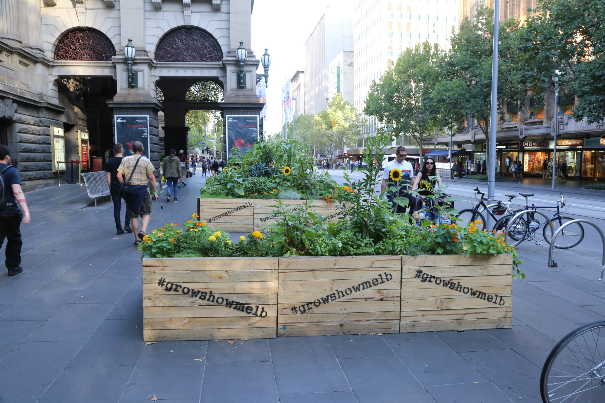 Fig 32: A small urban farm in the middle of Melbourne's CBD
