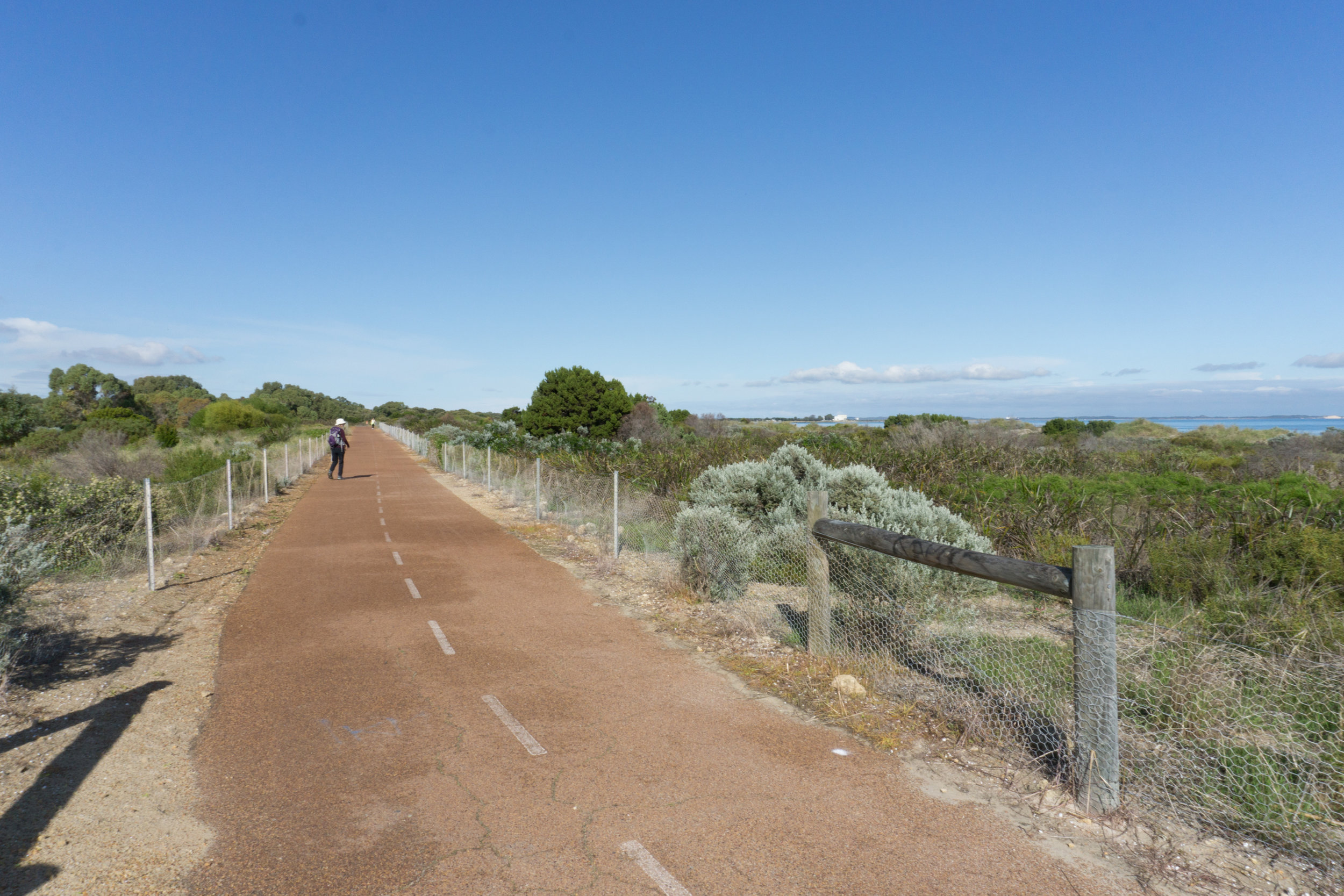 Fig 17: Path in the coastal foreshore between Coogee and Woodman Point south of Perth
