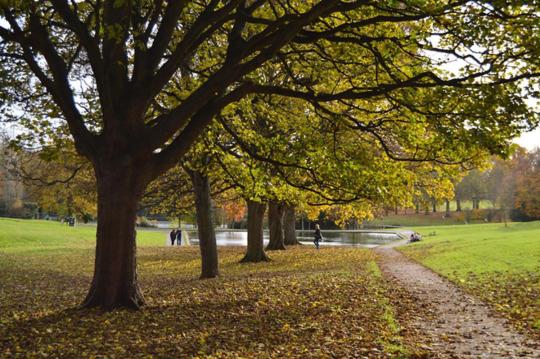 abington-park.jpg