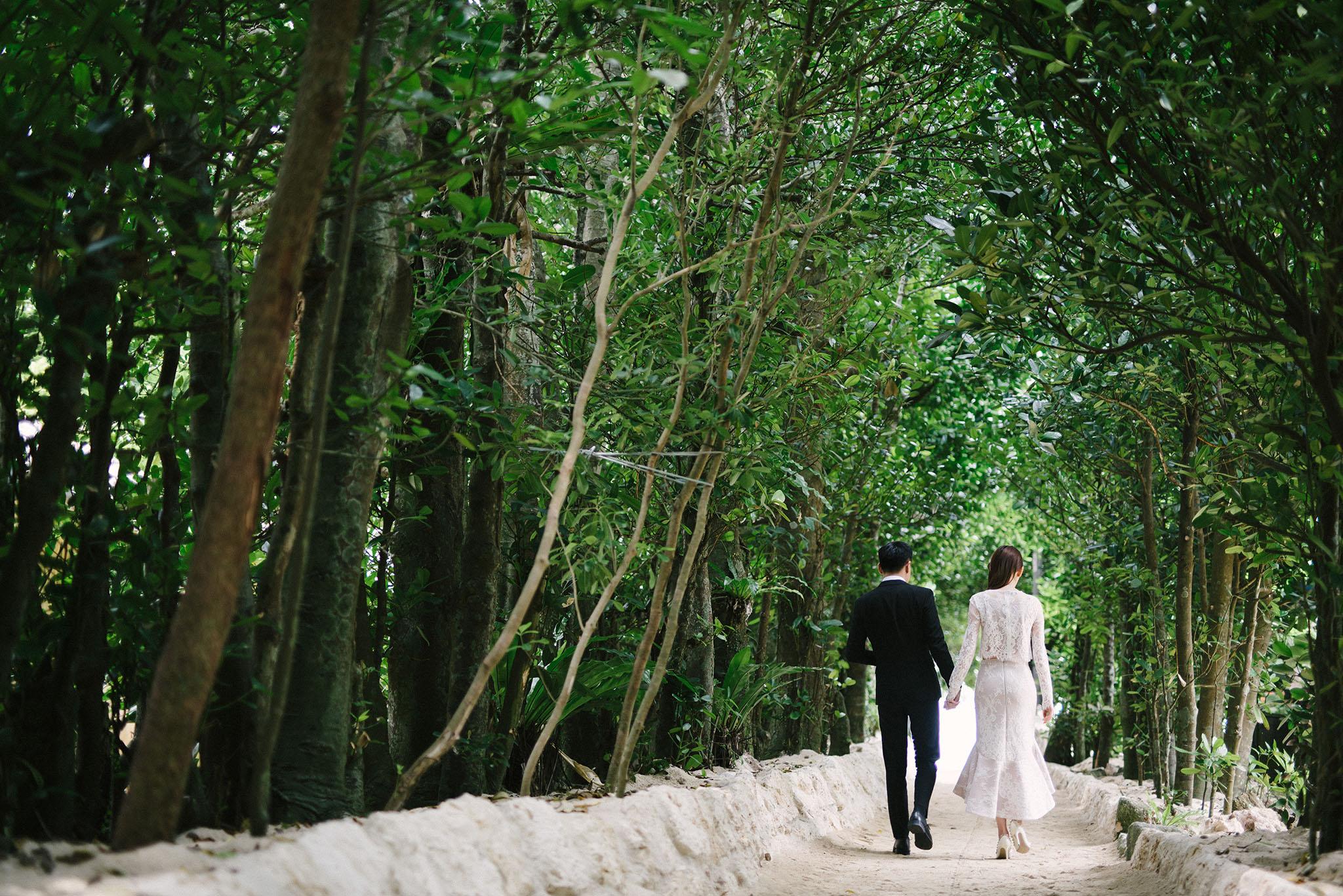 沖縄の人気ロケ地の備瀬のフクギ並木