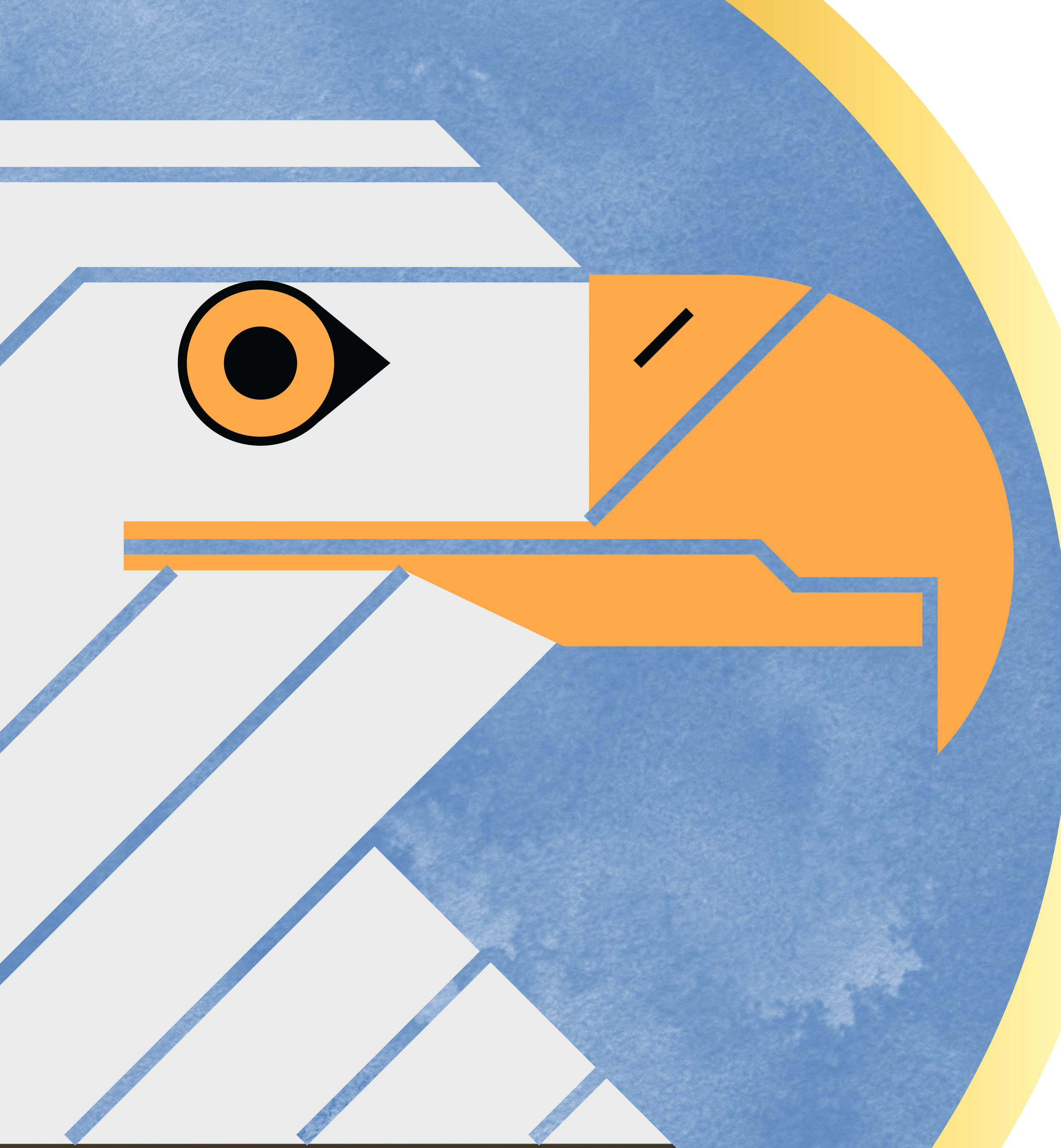 Bald Eagle (Close Up).jpg