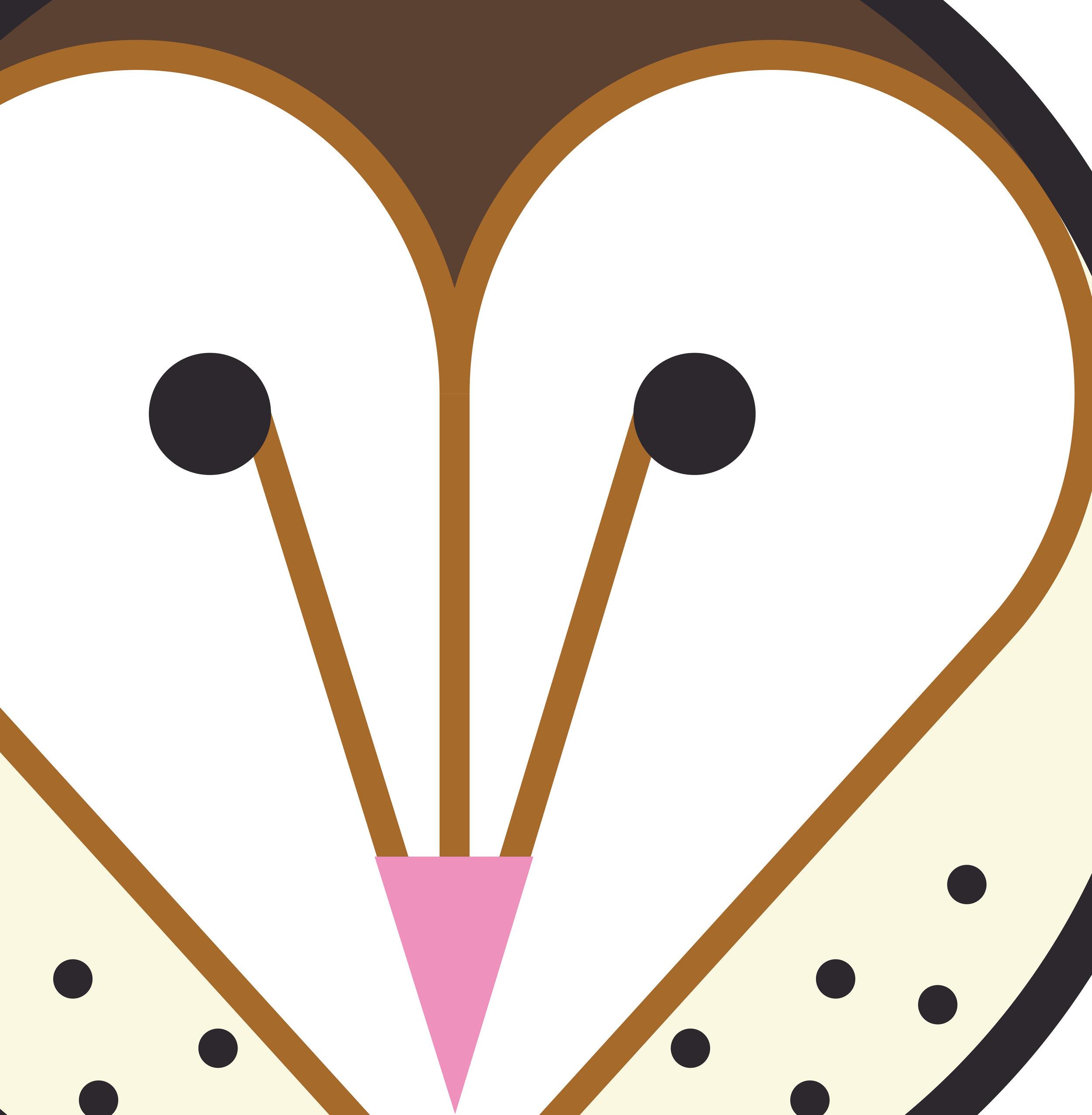 Barn Owl2 (Close Up).jpg