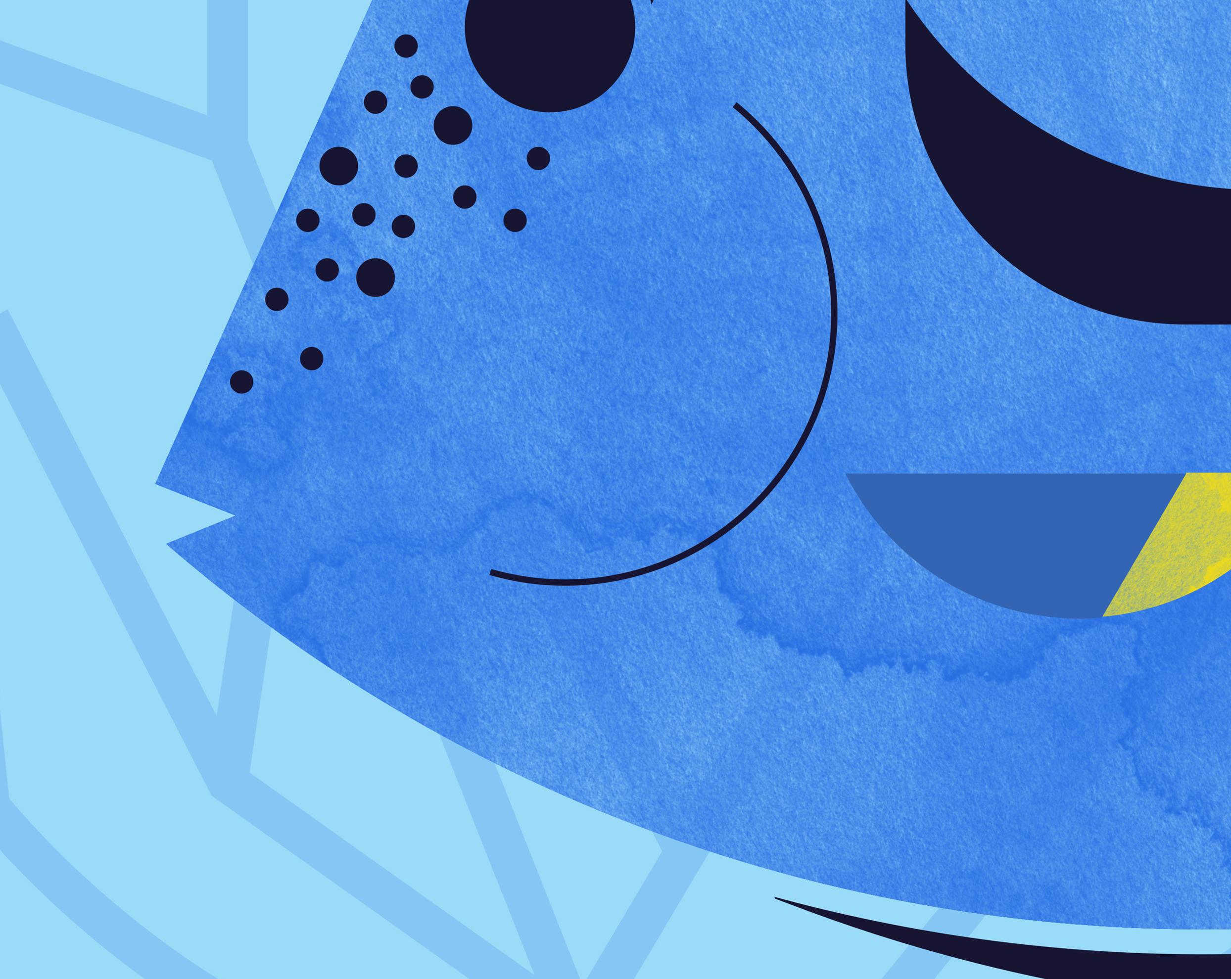 Blue Tang Fish (Close Up).jpg