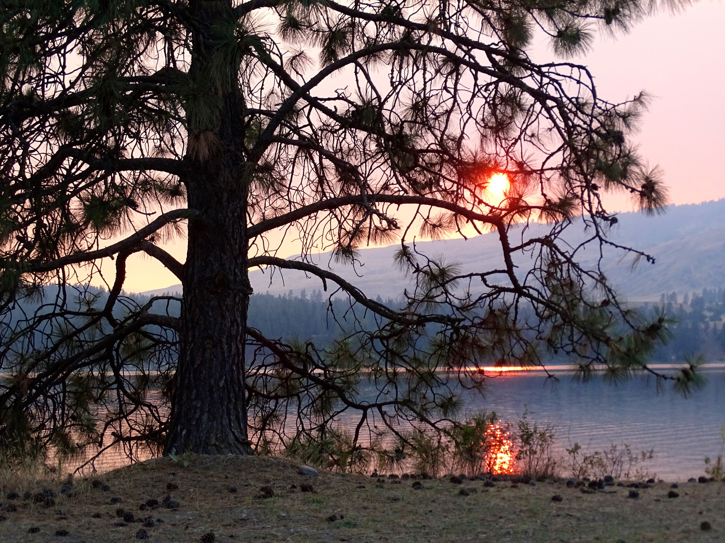 Smokey Fire Orange Sunset...