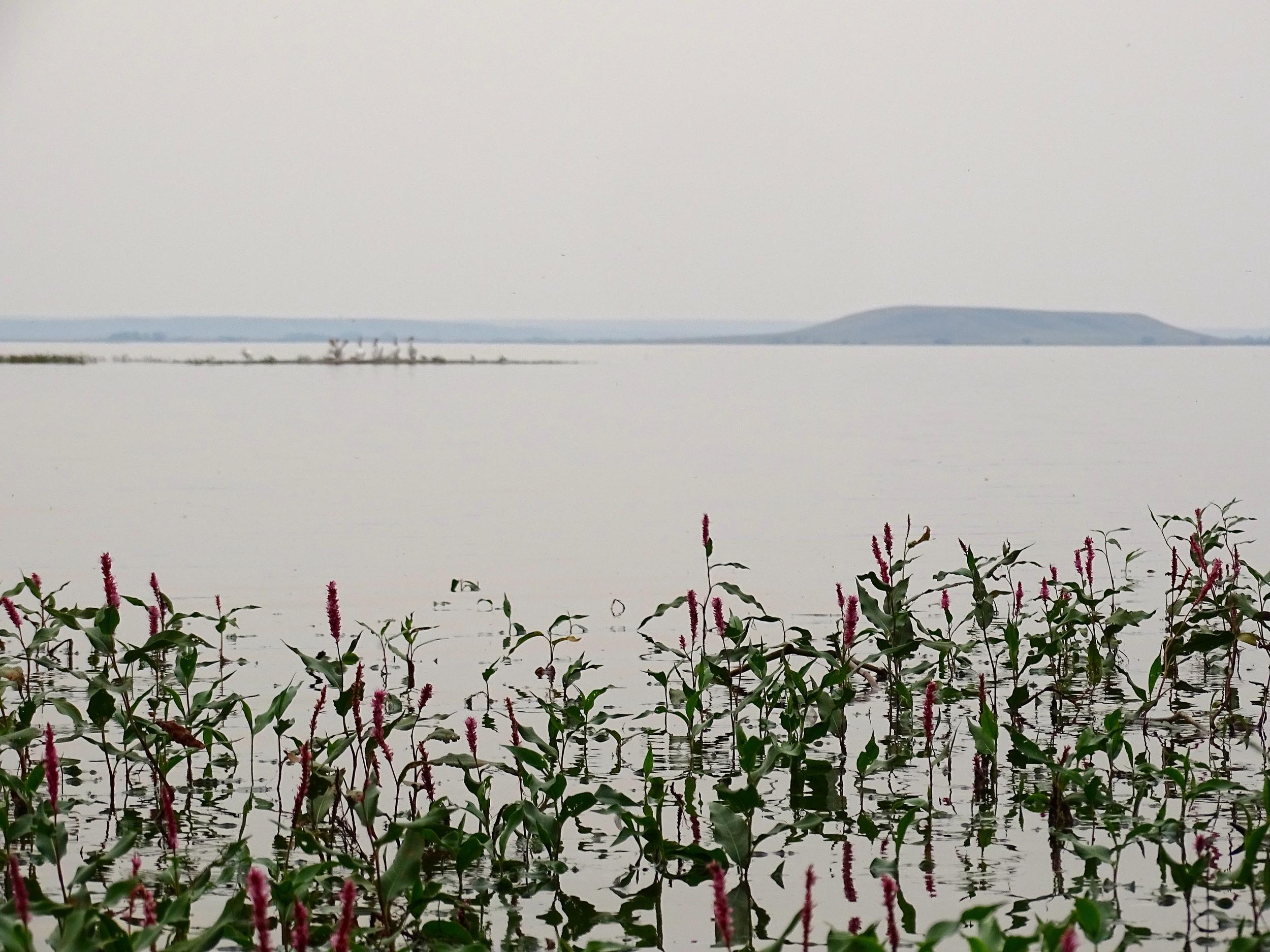 Evening at Nelson Reservoir in North Dakota