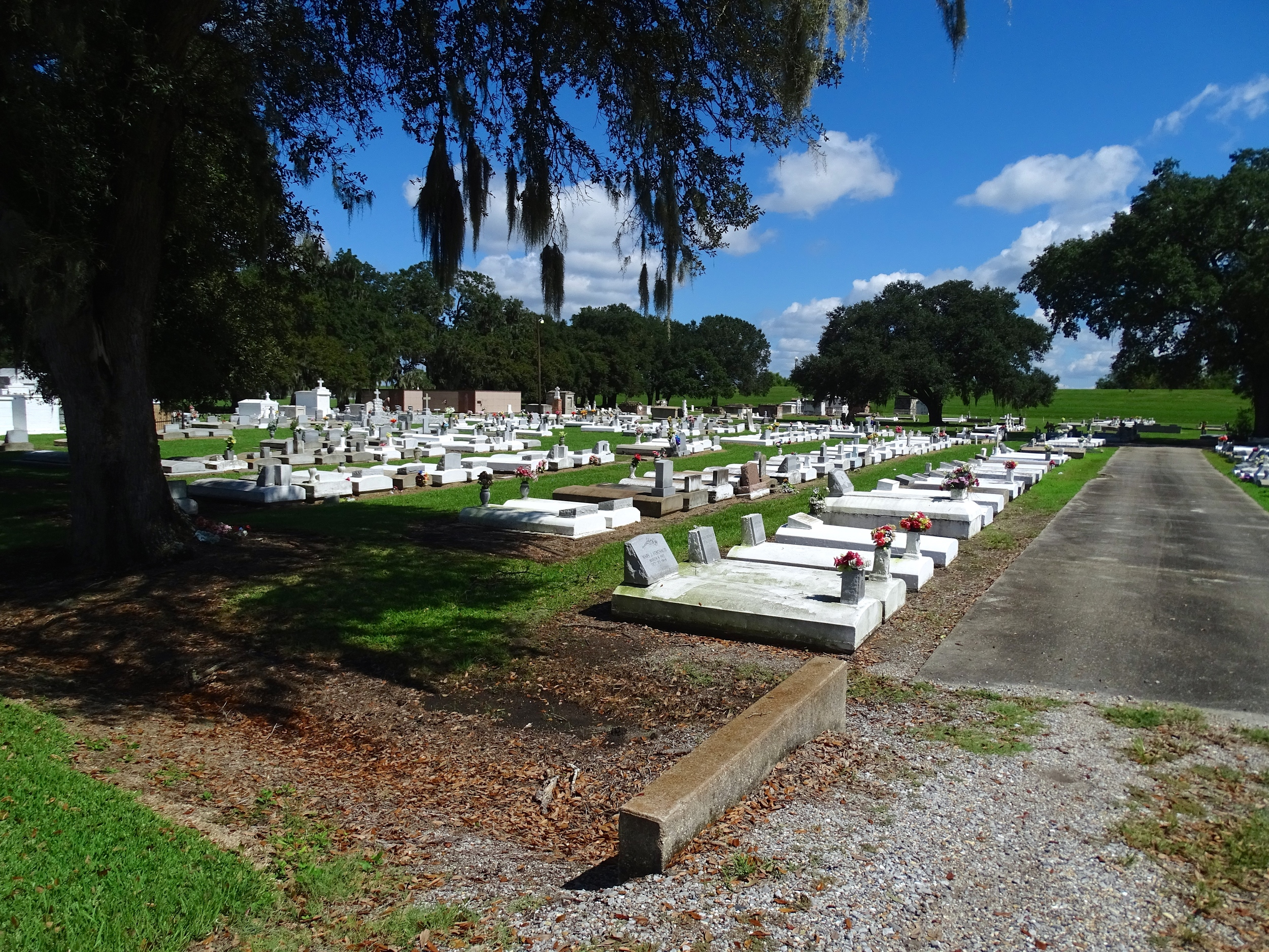 Cemeteries are Above Ground when...