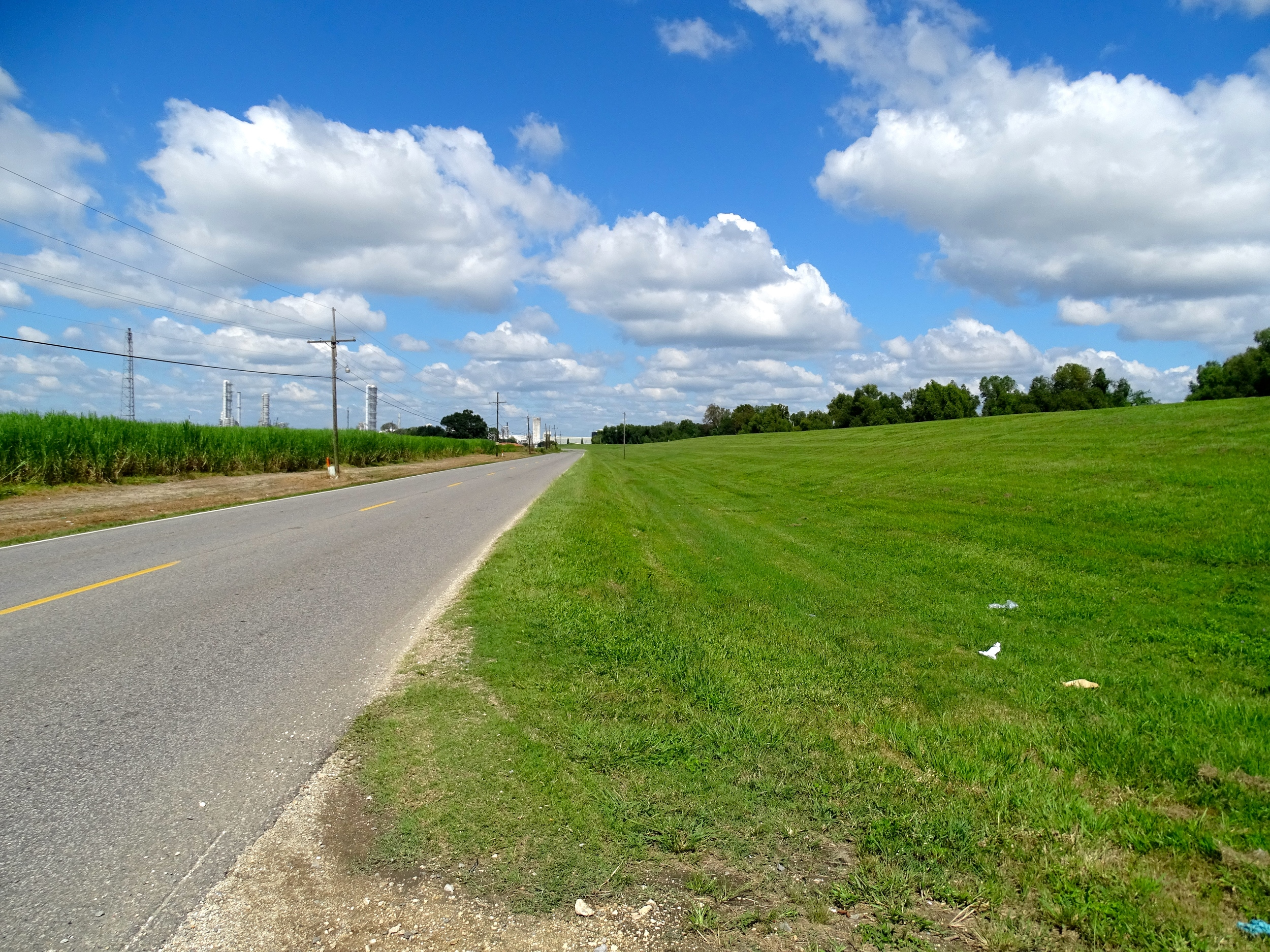Little Roads Following the Levee on the Mississippi River