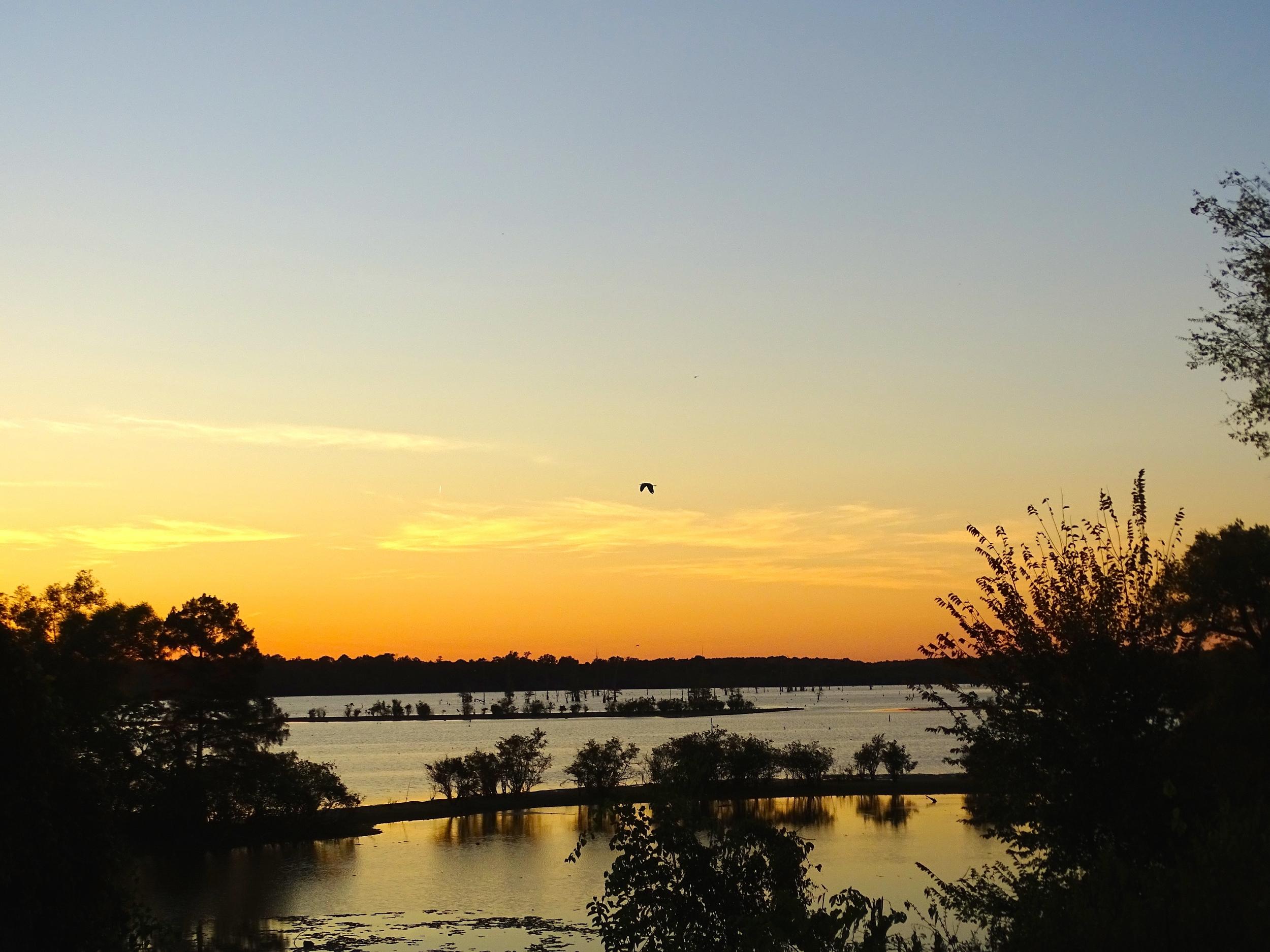 Sunset over the LA Bayou