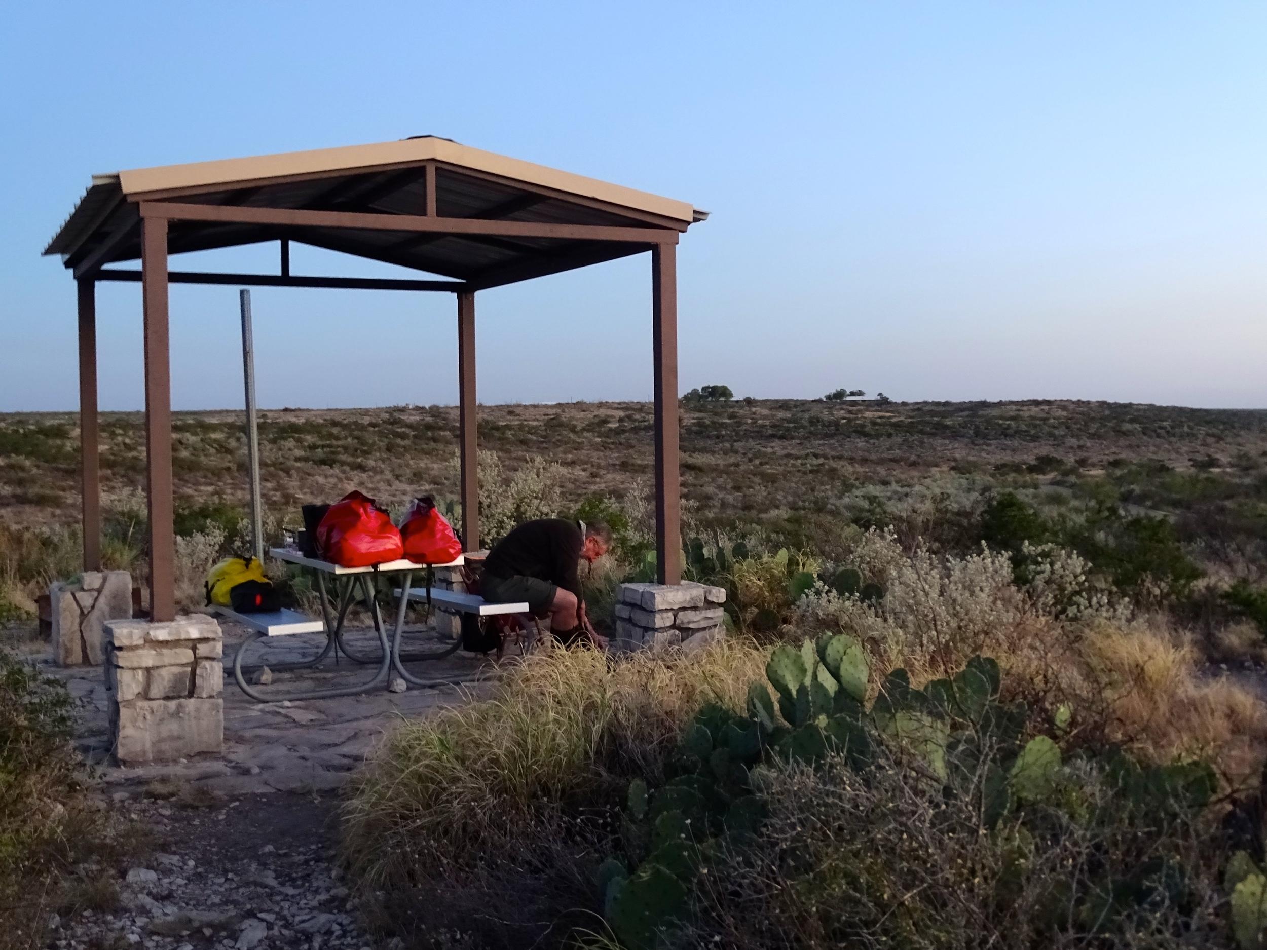 Camp area, nice shade.
