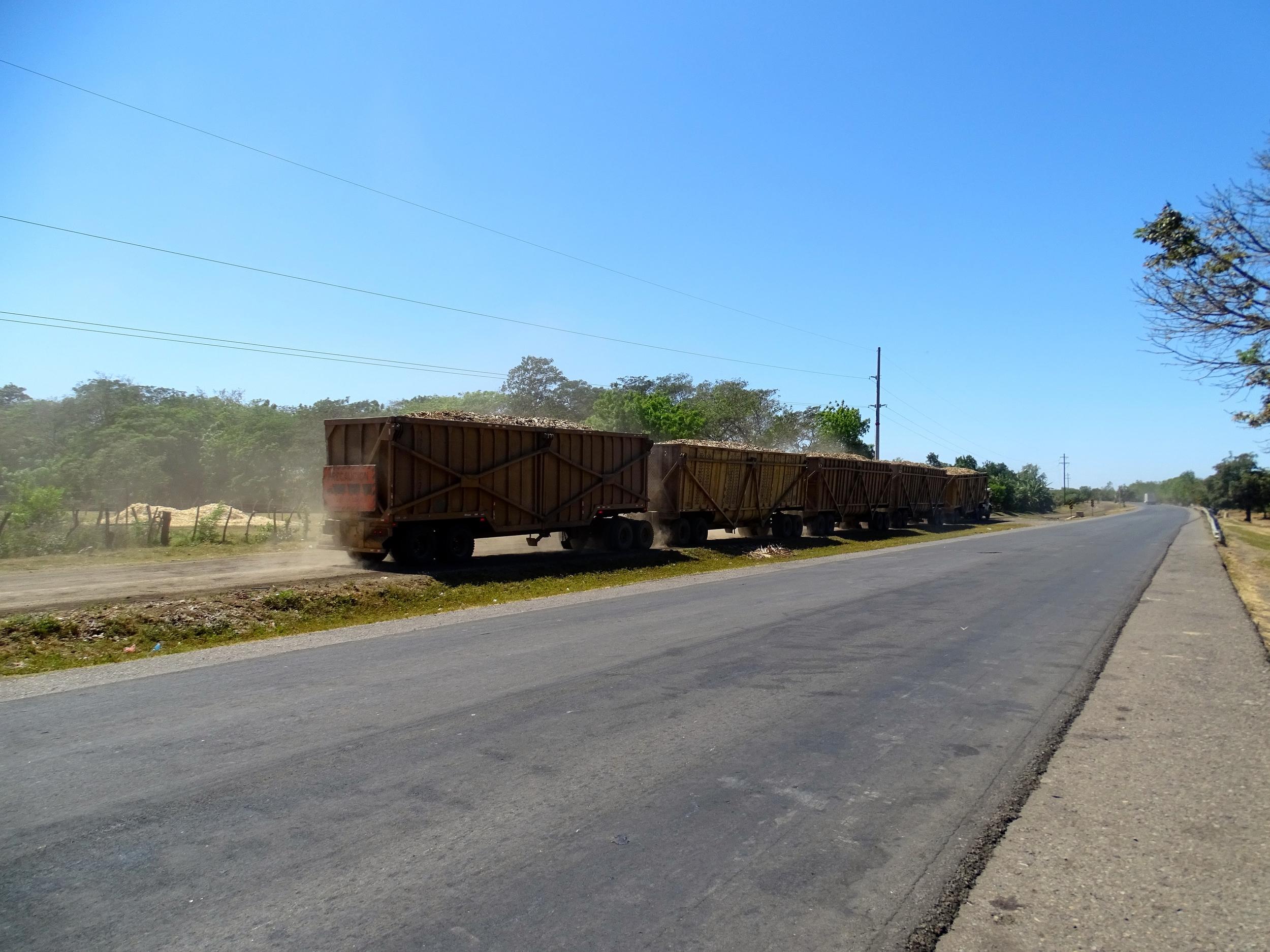 Semi-truck hauling 4 trailers full of sugar cane debris.