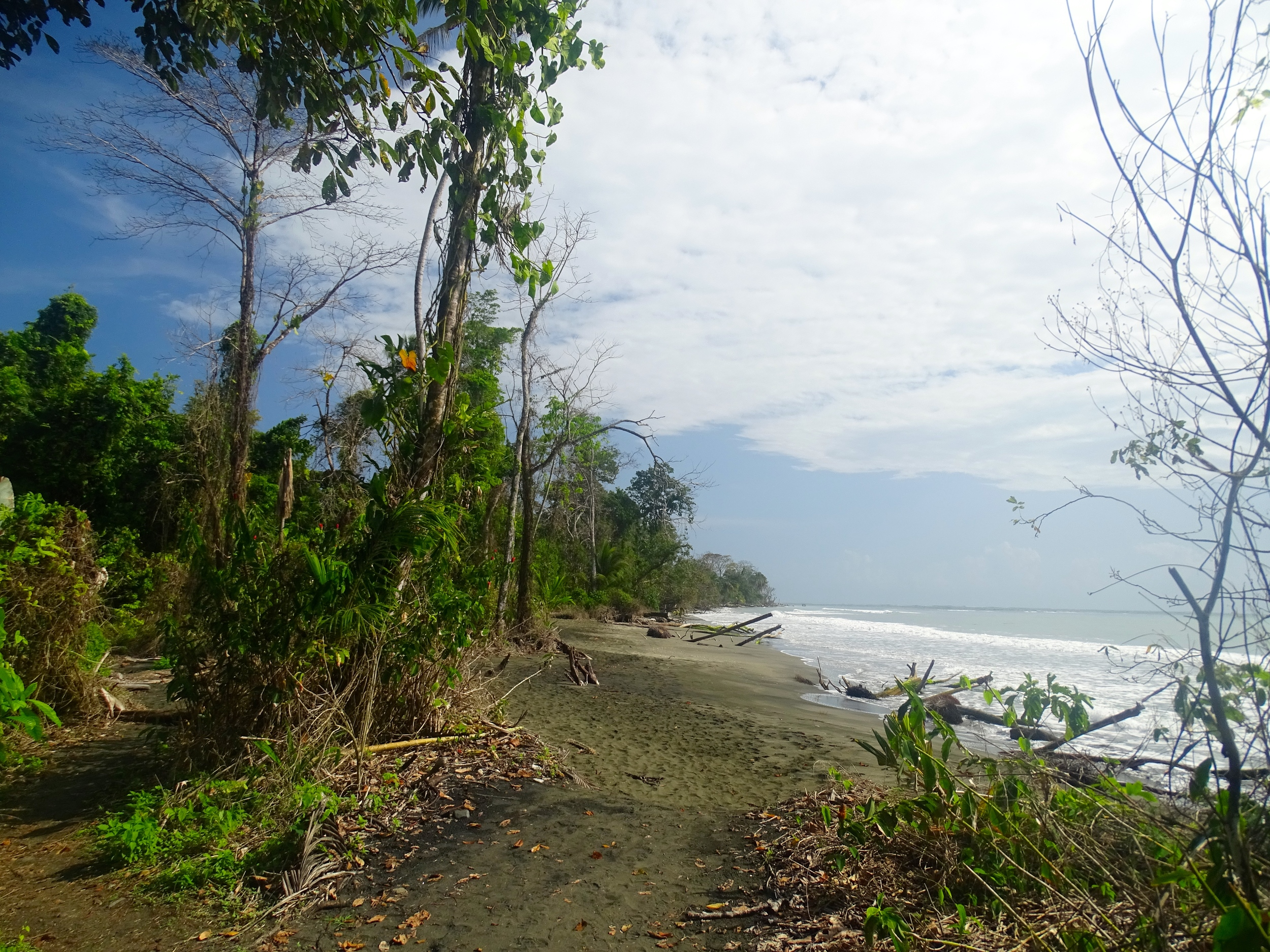 Starting hike through Cahuita National Park