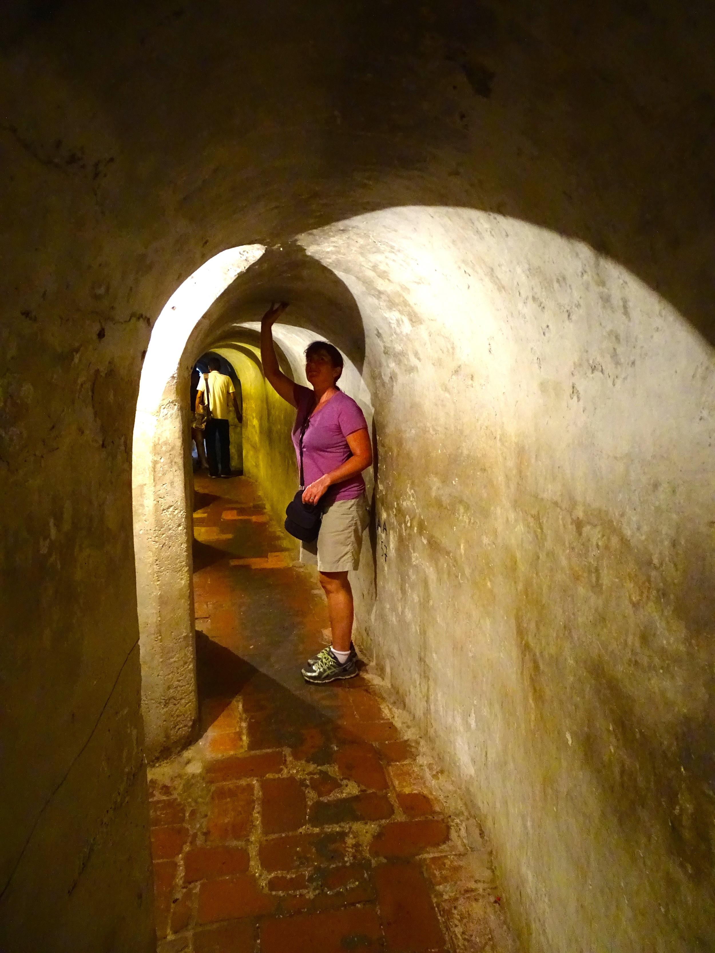 Short tunnels ran throughout.