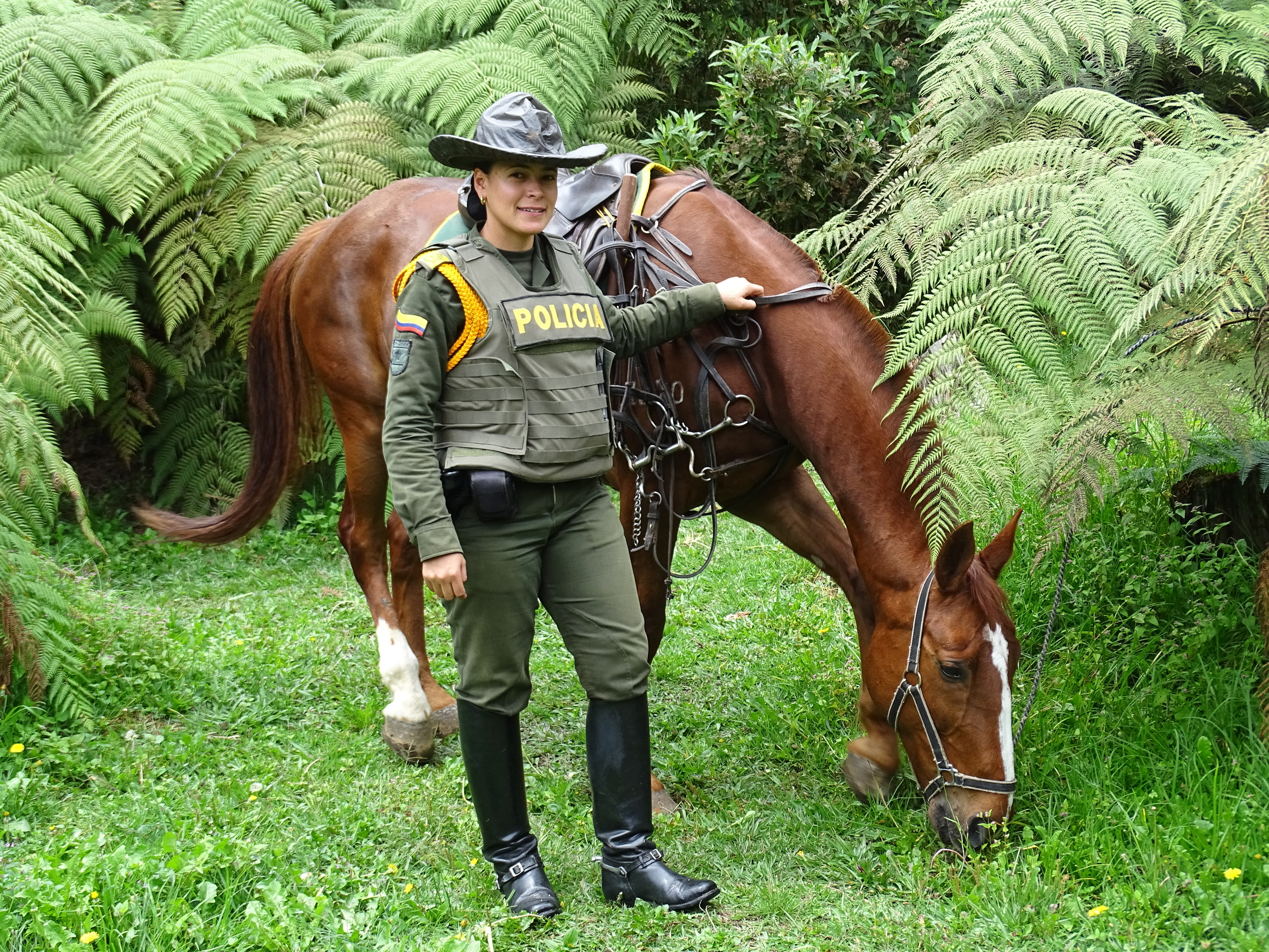 Gorgeous horses and rangers :)