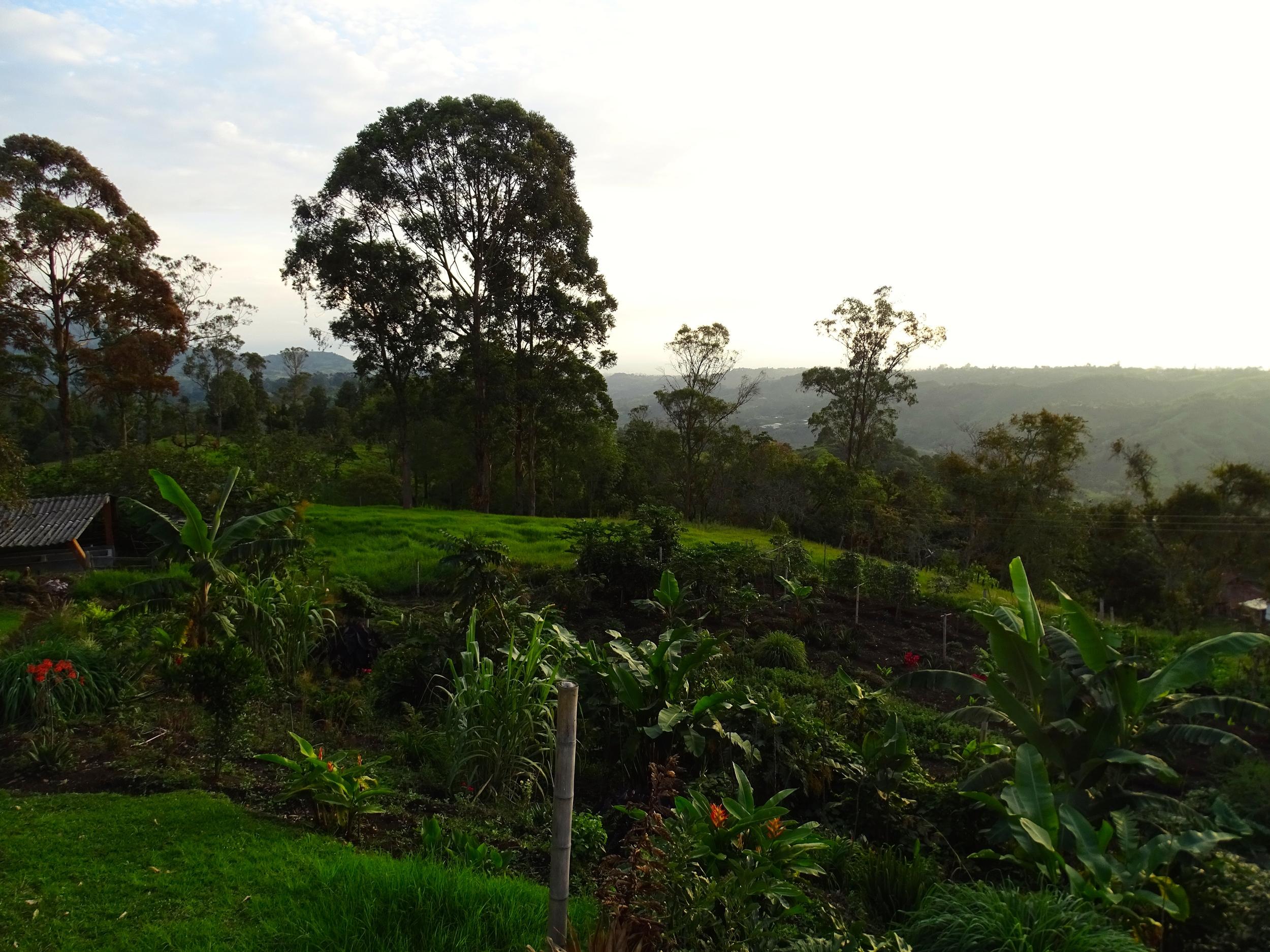 The next couple photos are the views around the hostel.
