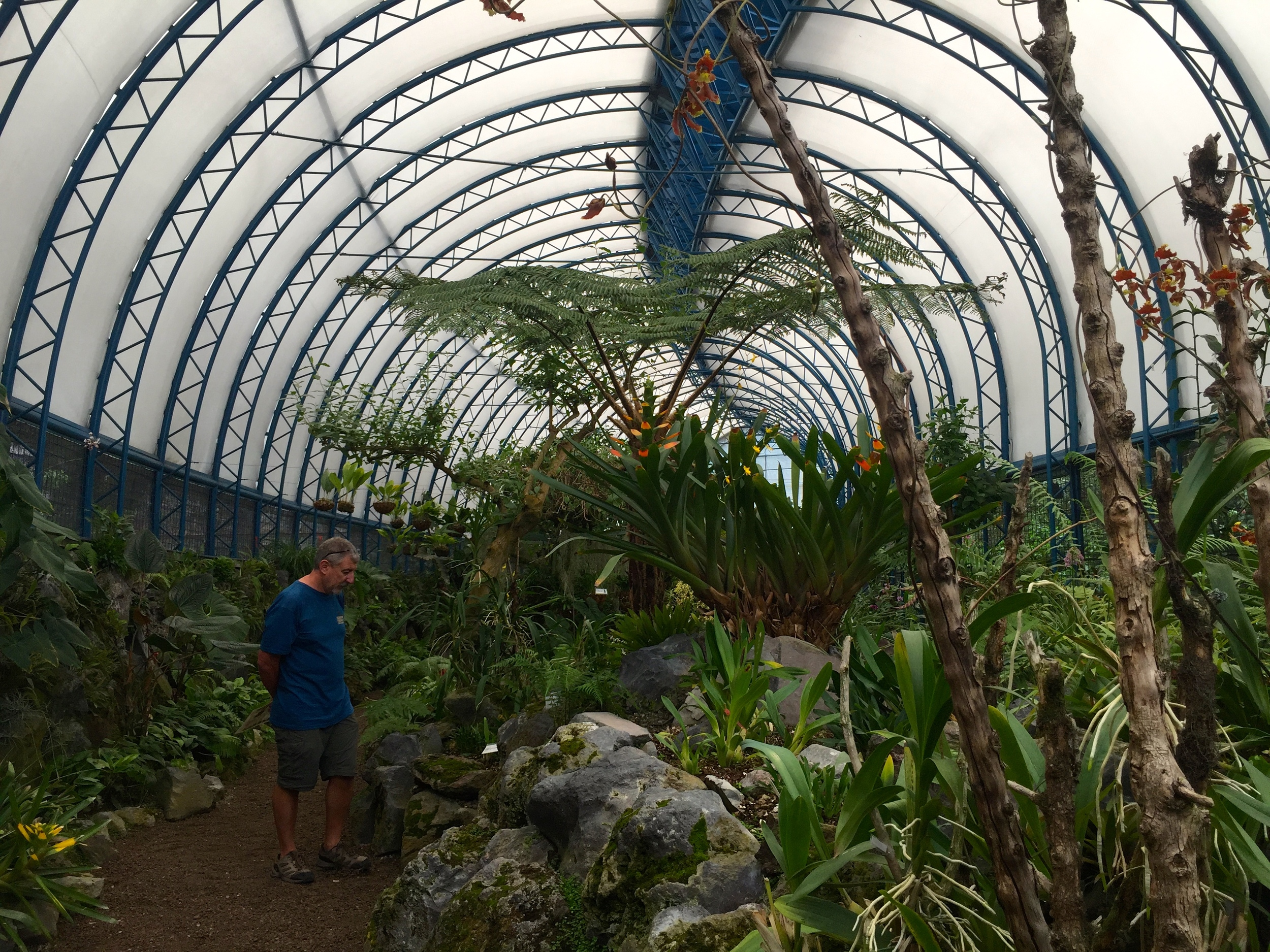 There were a few gigantic greenhouses to visit.