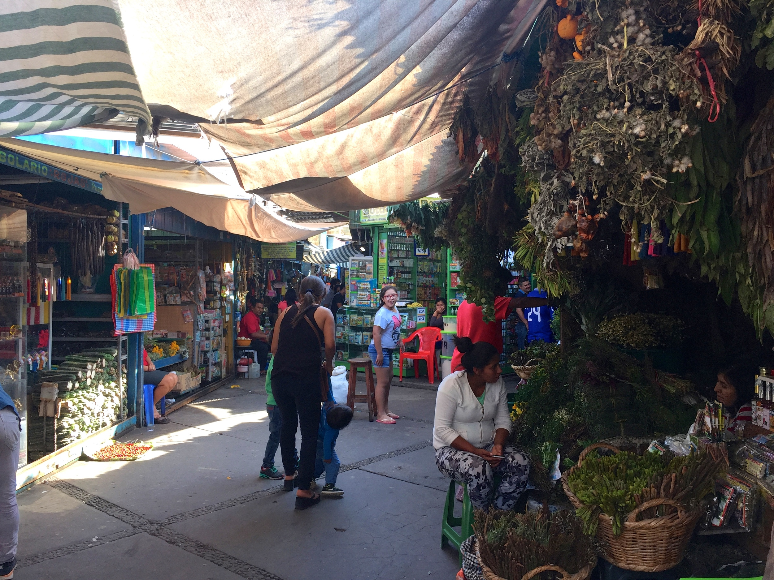 While waiting for our boots to be repaired, we explored a HUGE market, and this is a tiny, tiny corner.  Herb central!