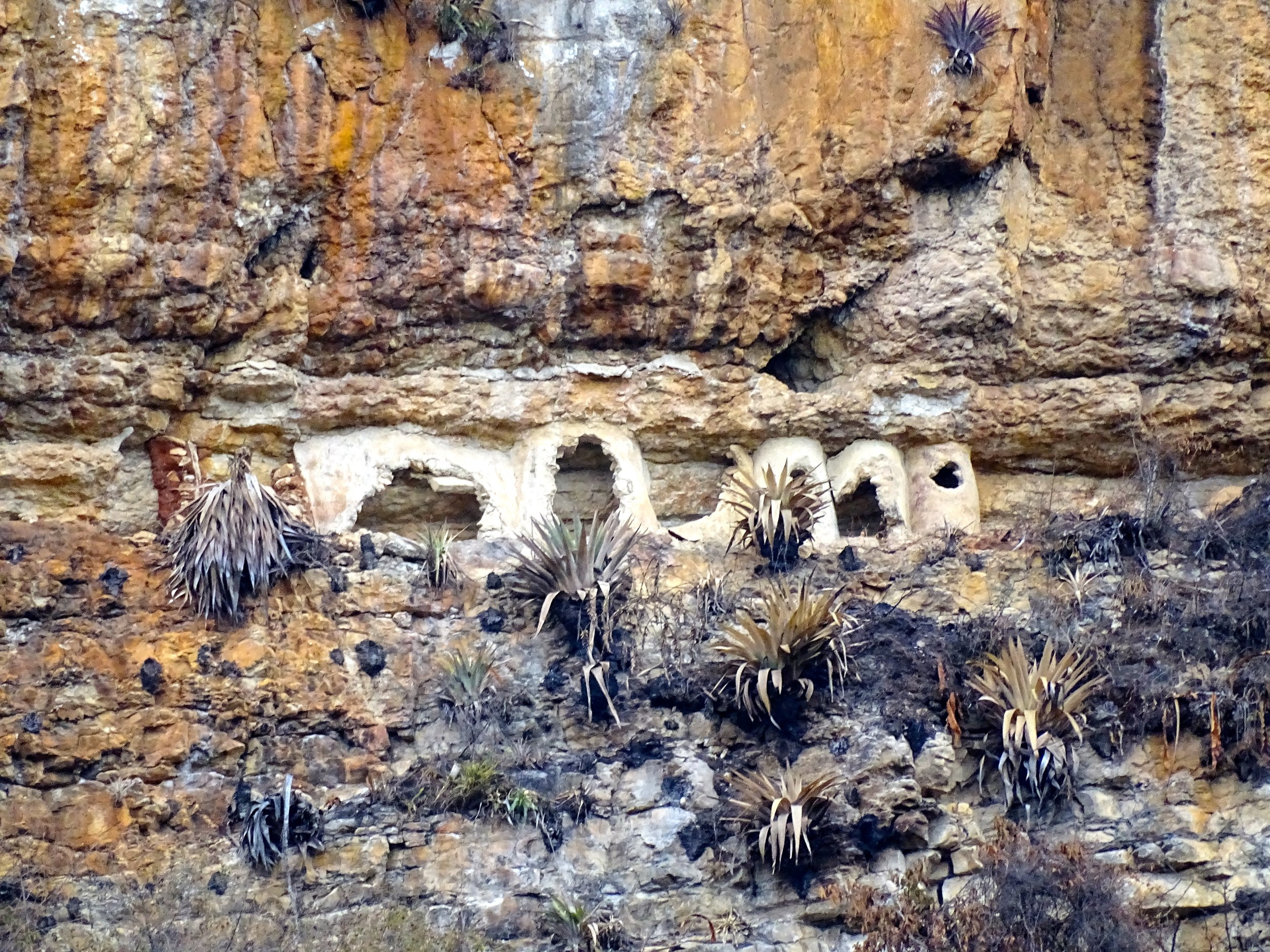 Other cliffs in the nearby region also held sarcophogi.  Most others had been broken open.  Looting in the past, we were told.