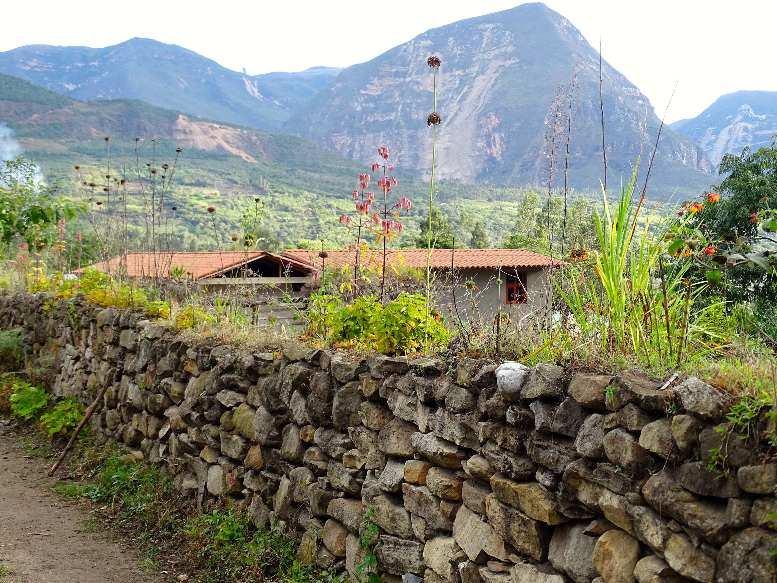 Stone walls are everywhere, like in New England.  The Peruvians have specialized for millenia.