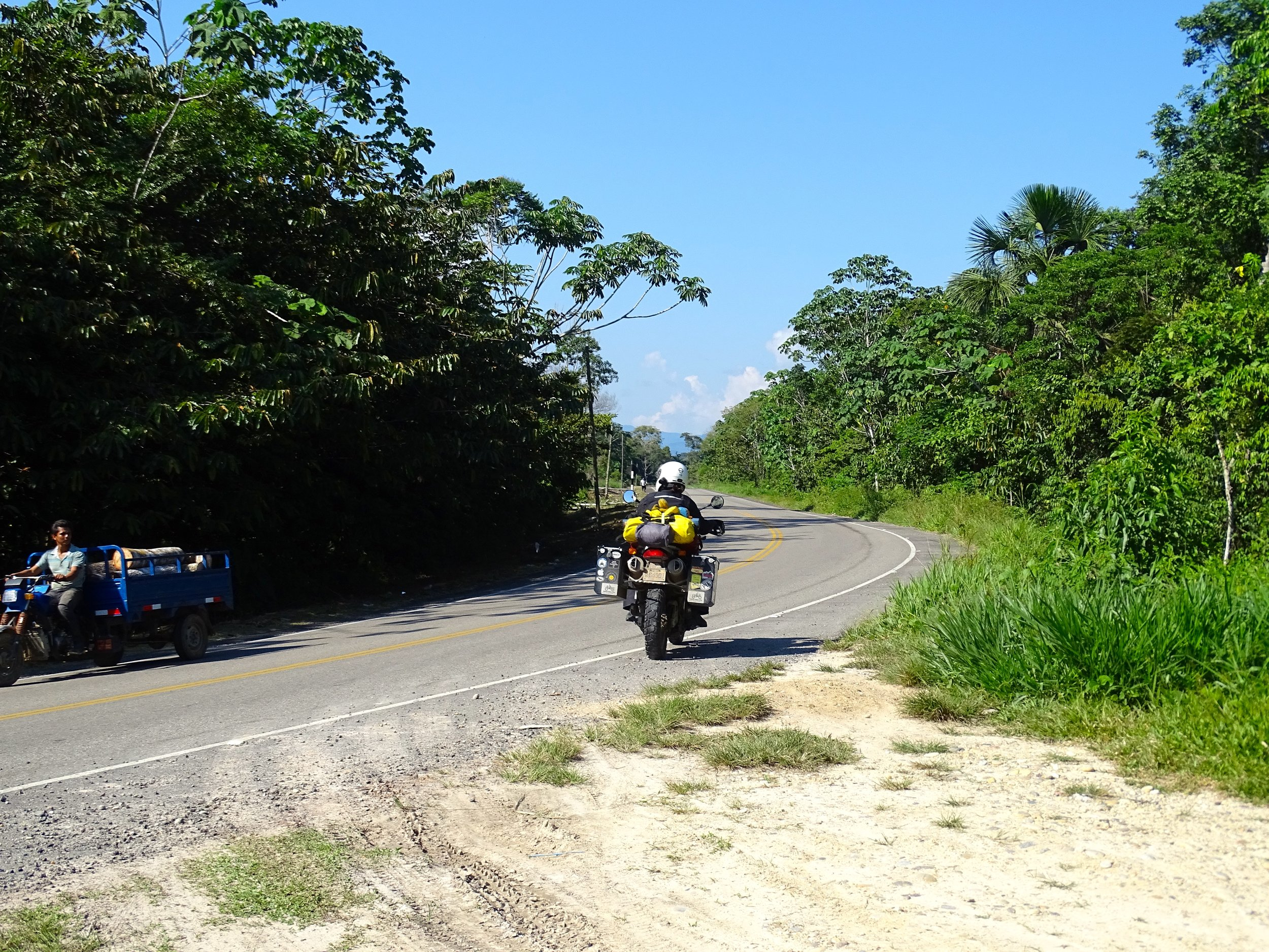 This area along the eastern base of the Andes is warm and humid.  Soon the road rolls out onto the flats, and Amazonia begins in earnest.