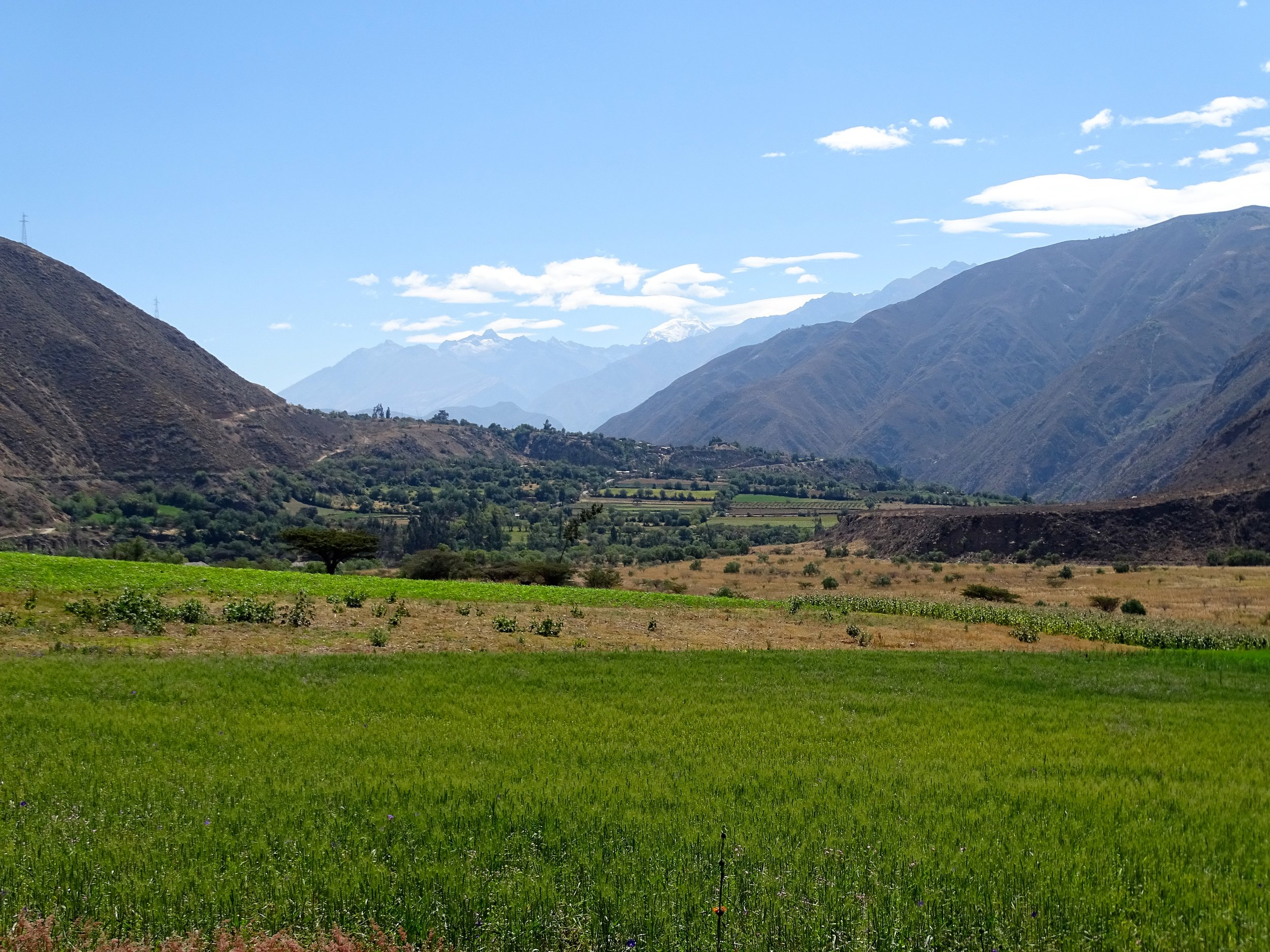 Below Yungay, the Rio Santa forms chains of small fertile valleys as it flows northward.