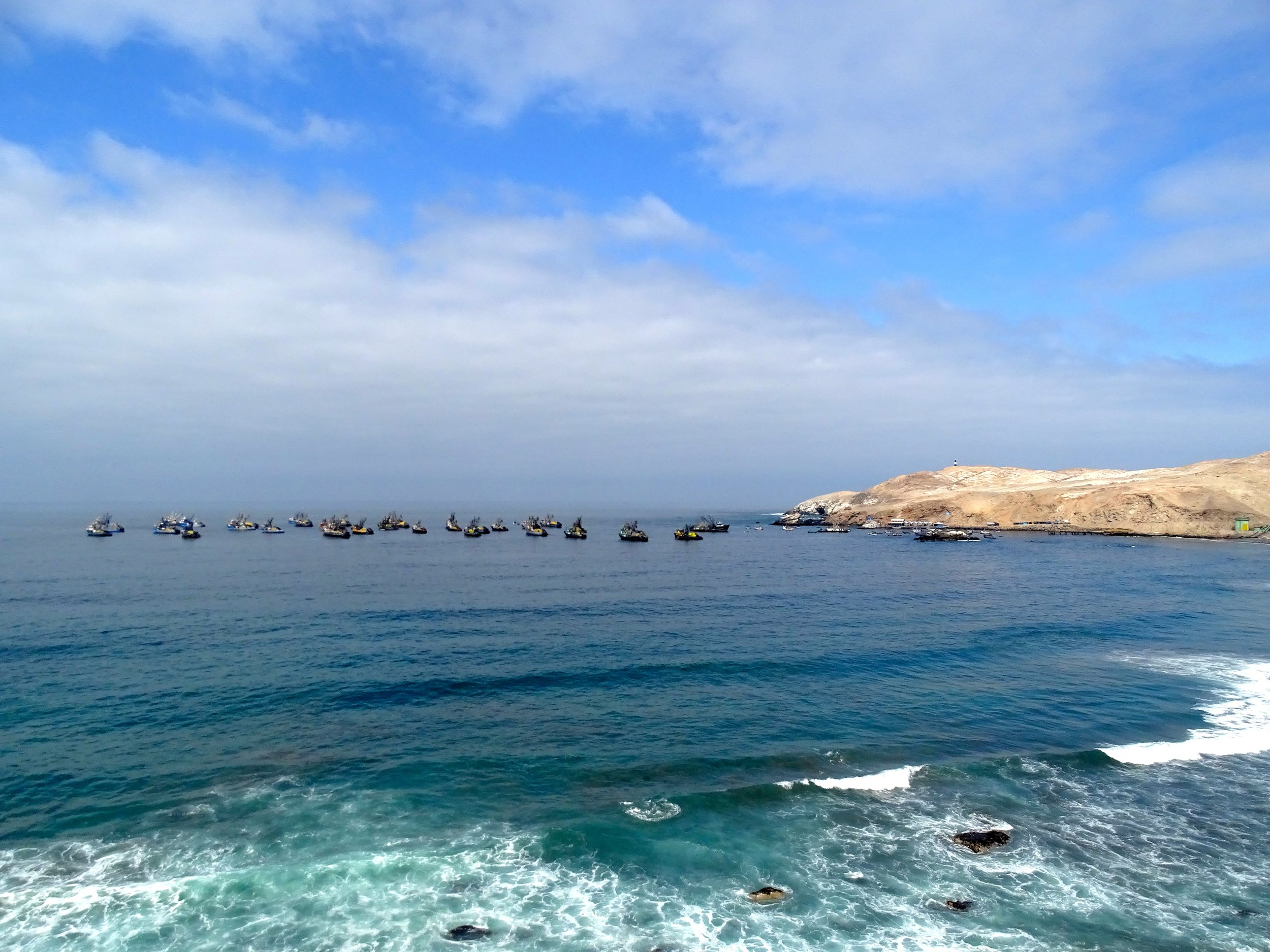 A Peruvian fishing port, lots of tuna boats.