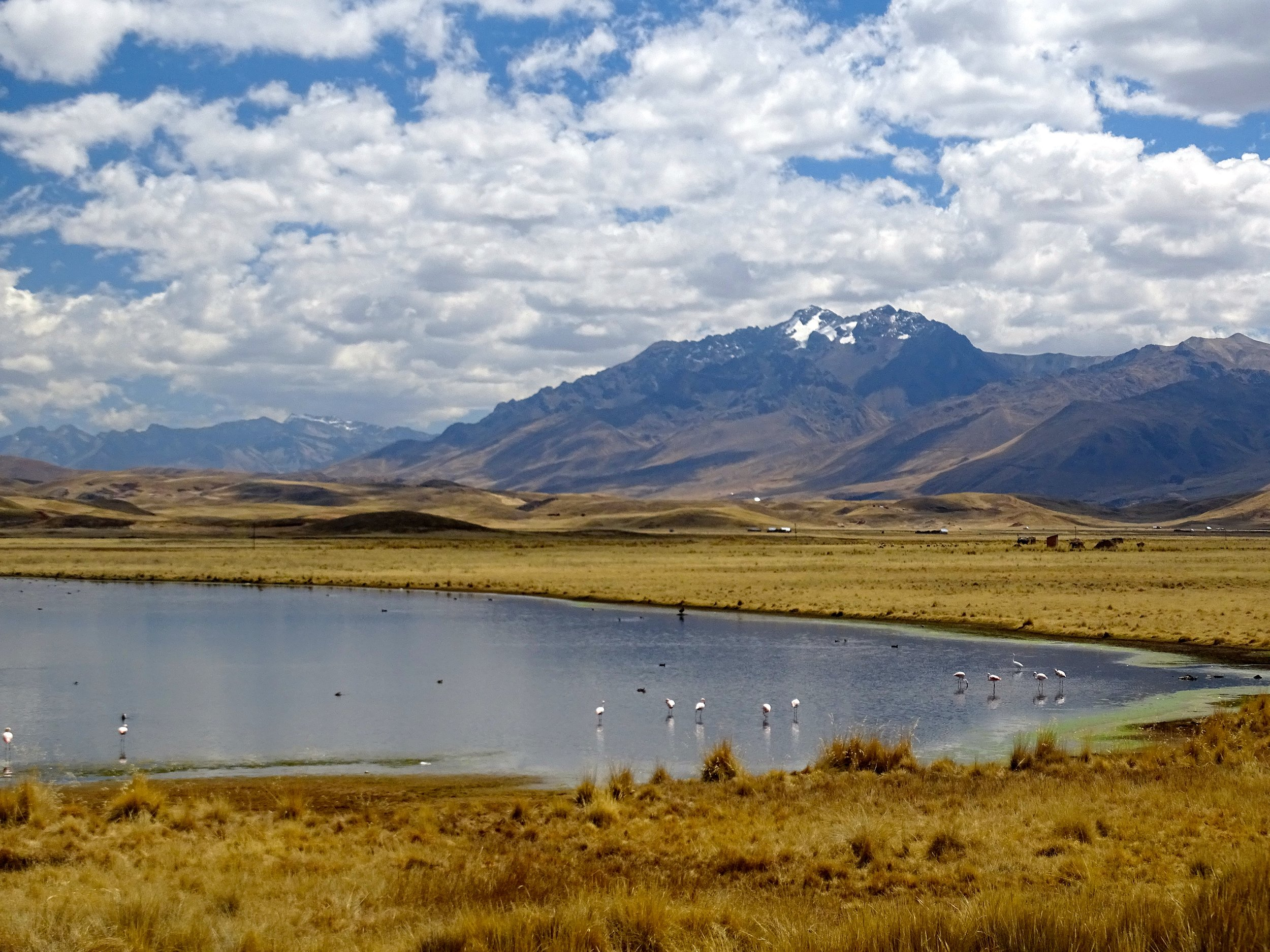 Altiplano high lakes.