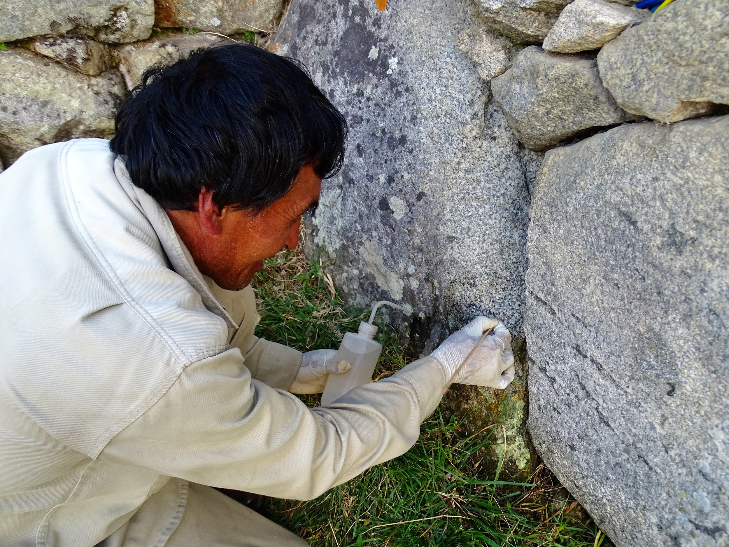 Cleaning the acidic lichens off the stones, using only distilled water, brushes, and soft wood tools.  An endless job to preserve the stones.