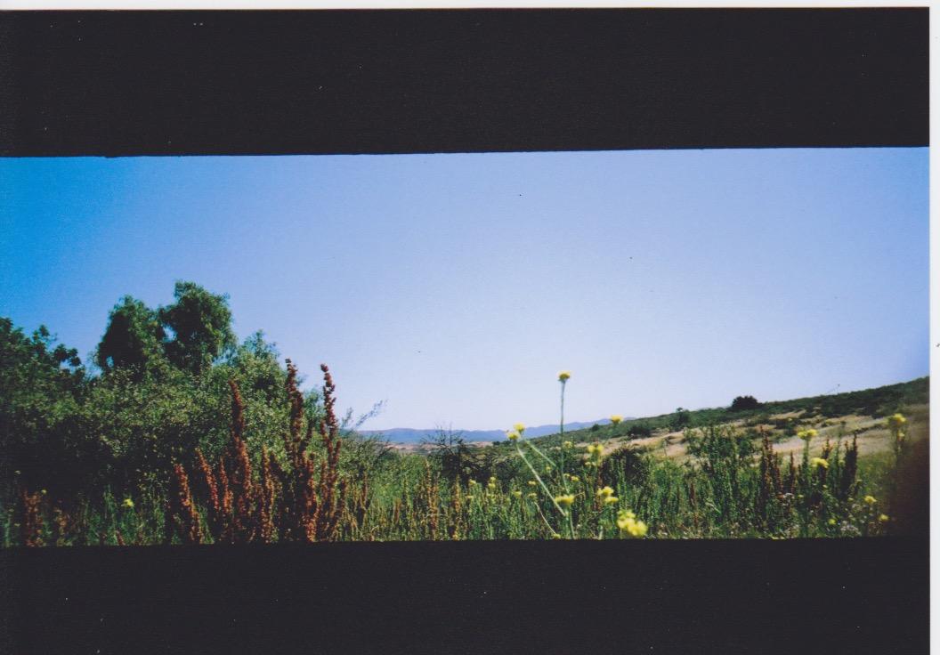 Ricky-J-Hernandez-35mm-AGFA-Ultra-Film-ASA-50-100-400-April-May-2015-PIX-Panorama-F11-One125-Sec 4.jpeg