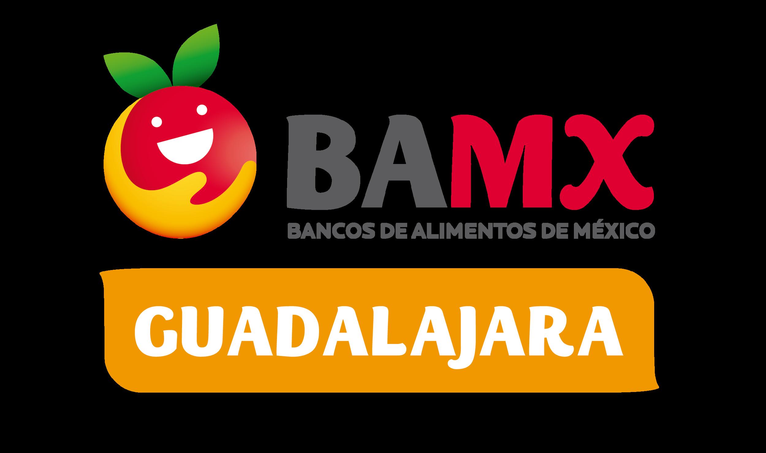 BAMX-02.png