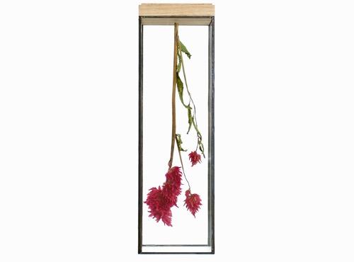 Showcase Long  Vaso vetro e ferro   1012Terra   Spazio Materiae   Essiccare fiori, fiori secchi   Napoli