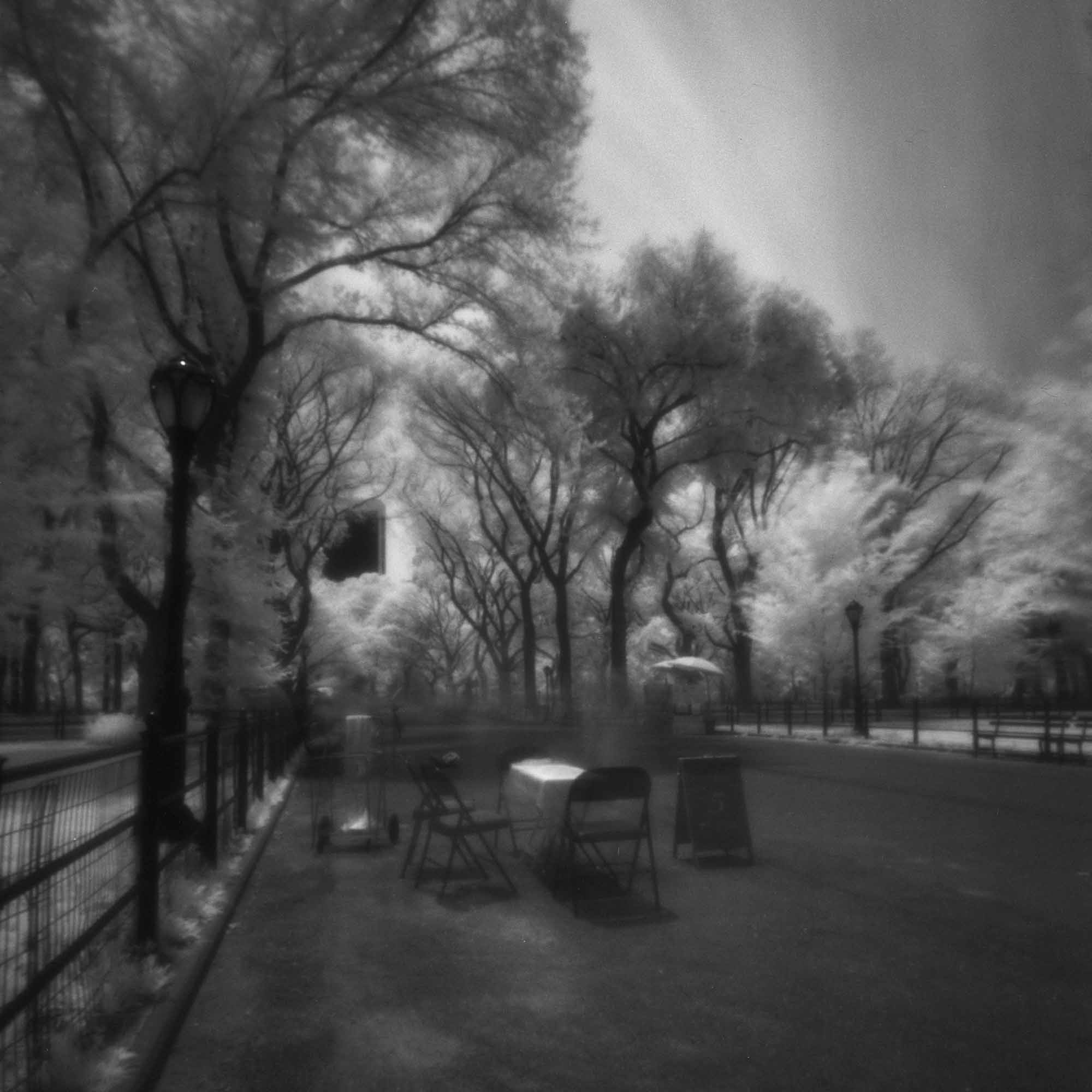 Central Park #1