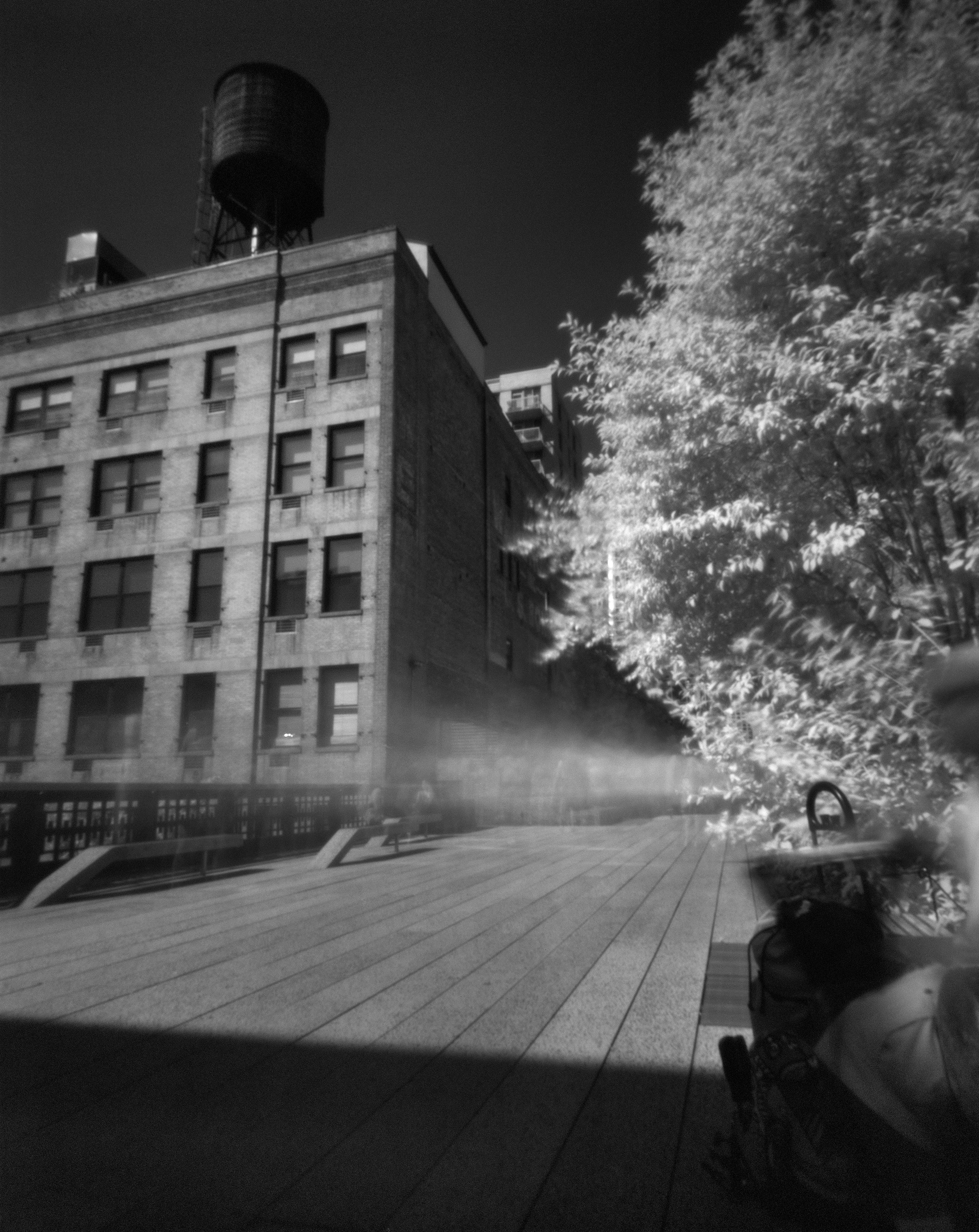 The High Line #3