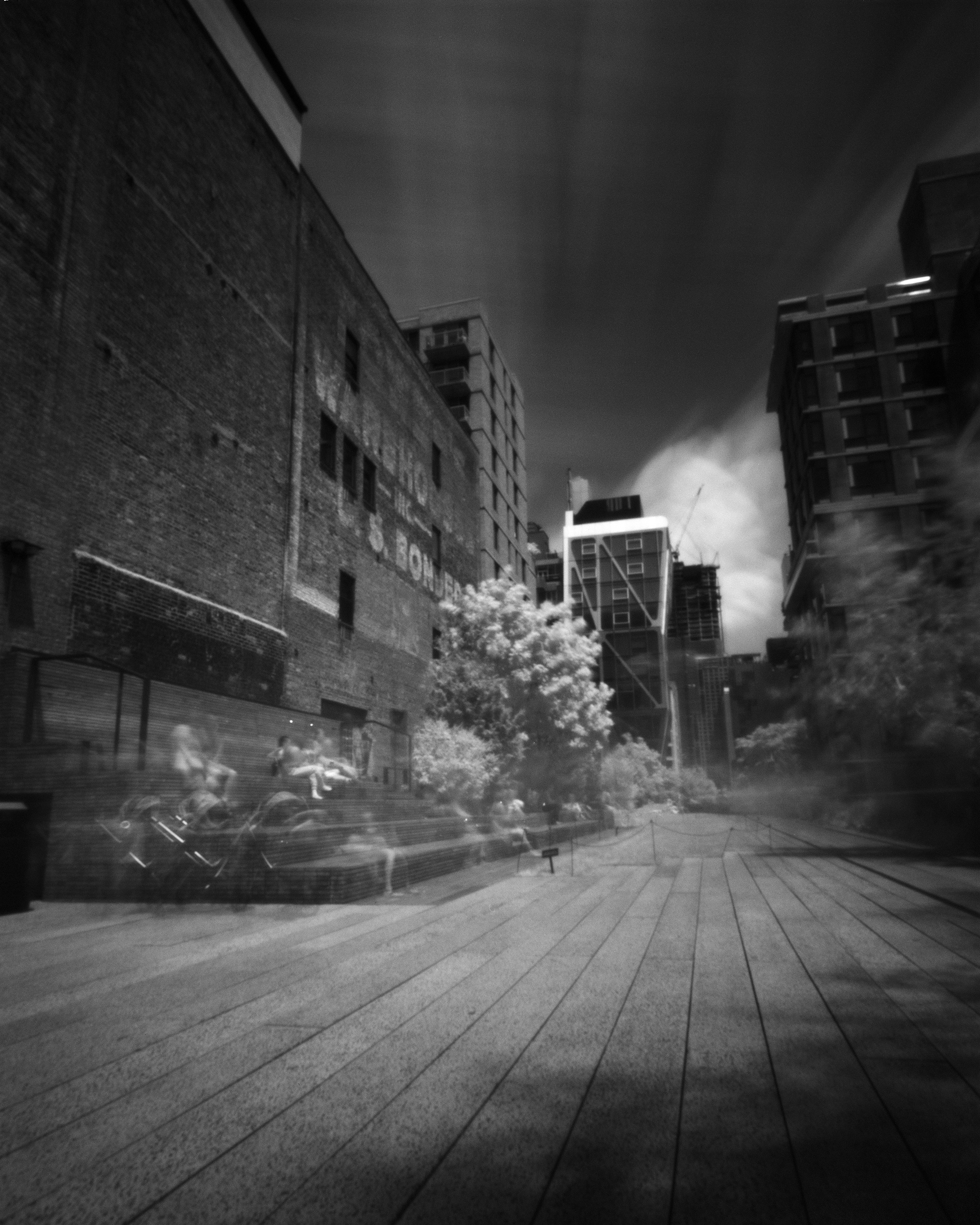 The High Line #5