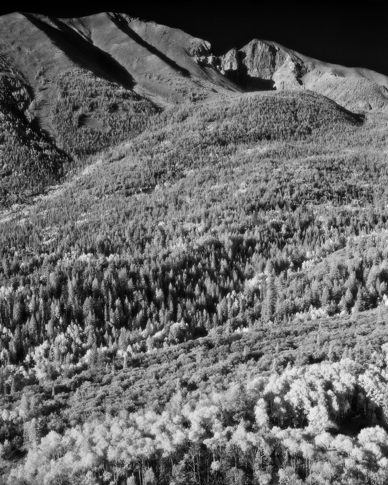 Wheeler Peak- Great Basin National Park, Nevada