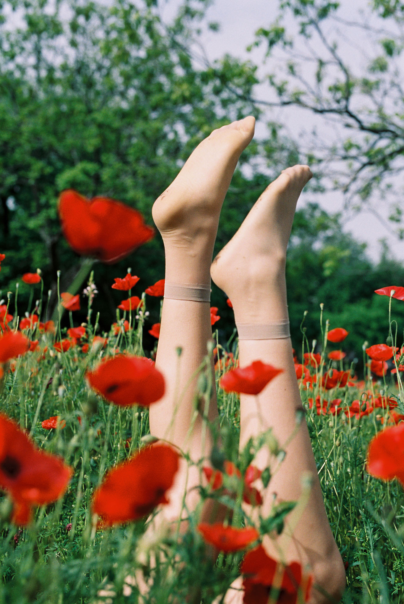 Cathlin McCullough Photography_tender things-8.jpg